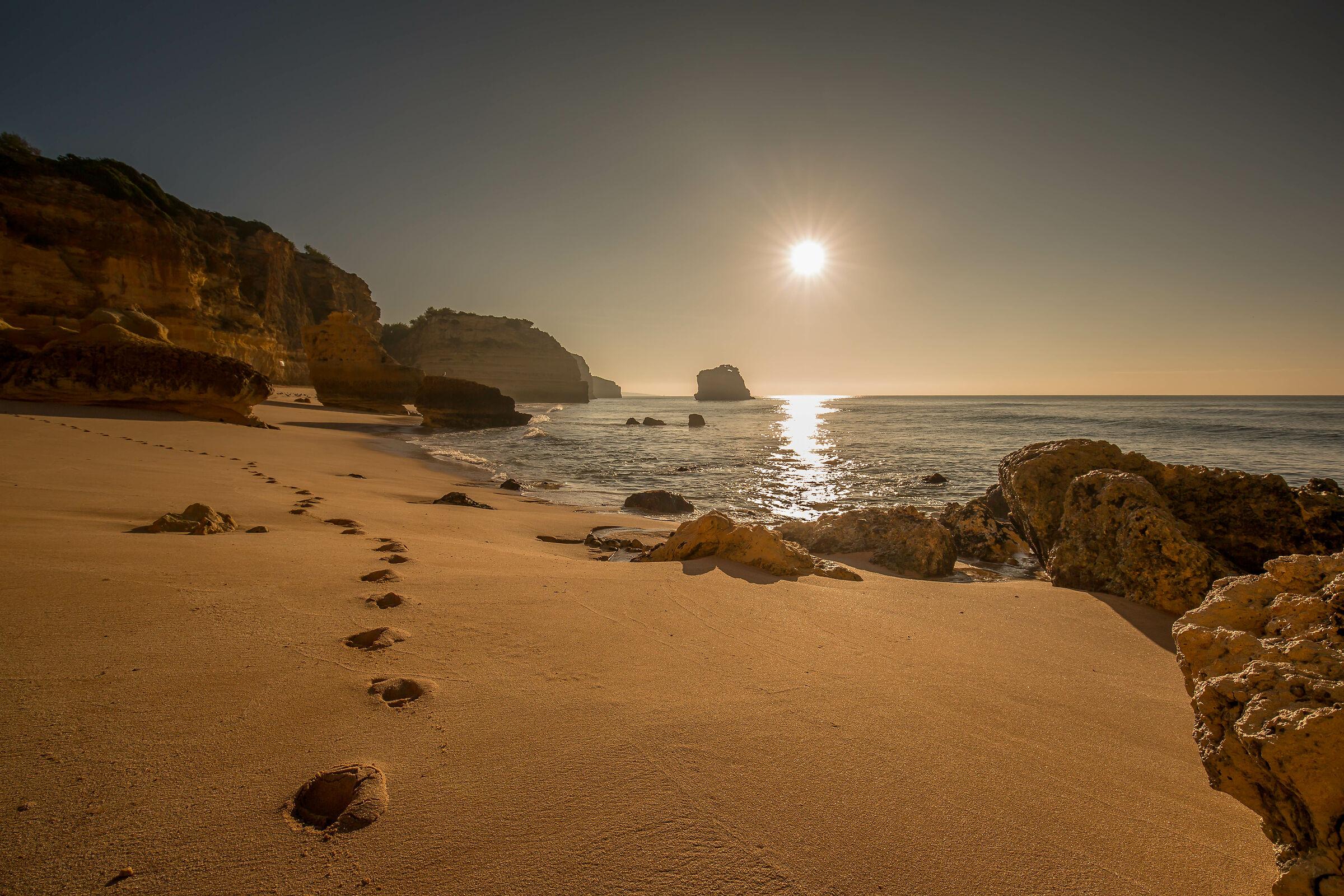 Sun... Sea... Earth!!!...