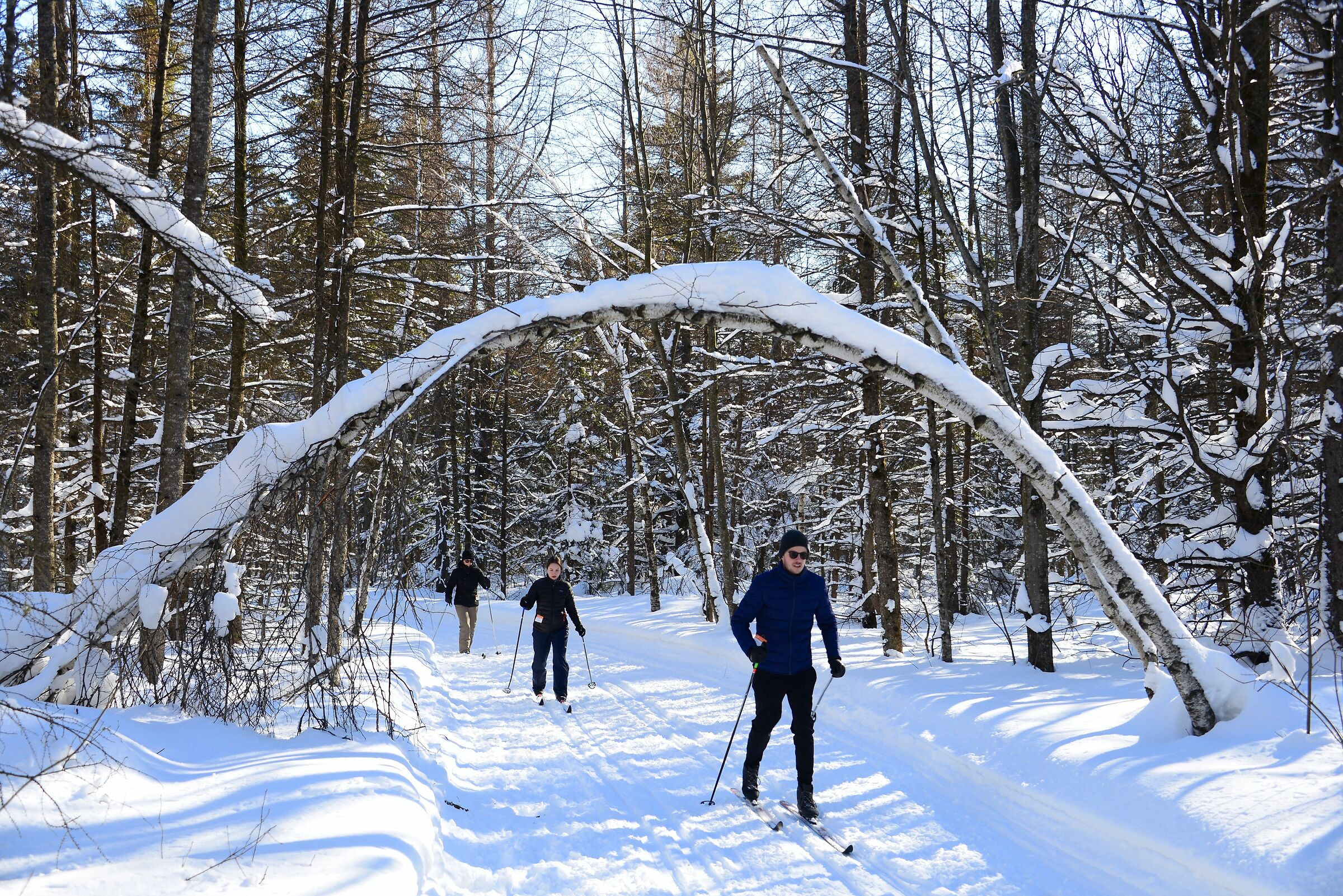 Cross-country skiing competition - Quebec City...