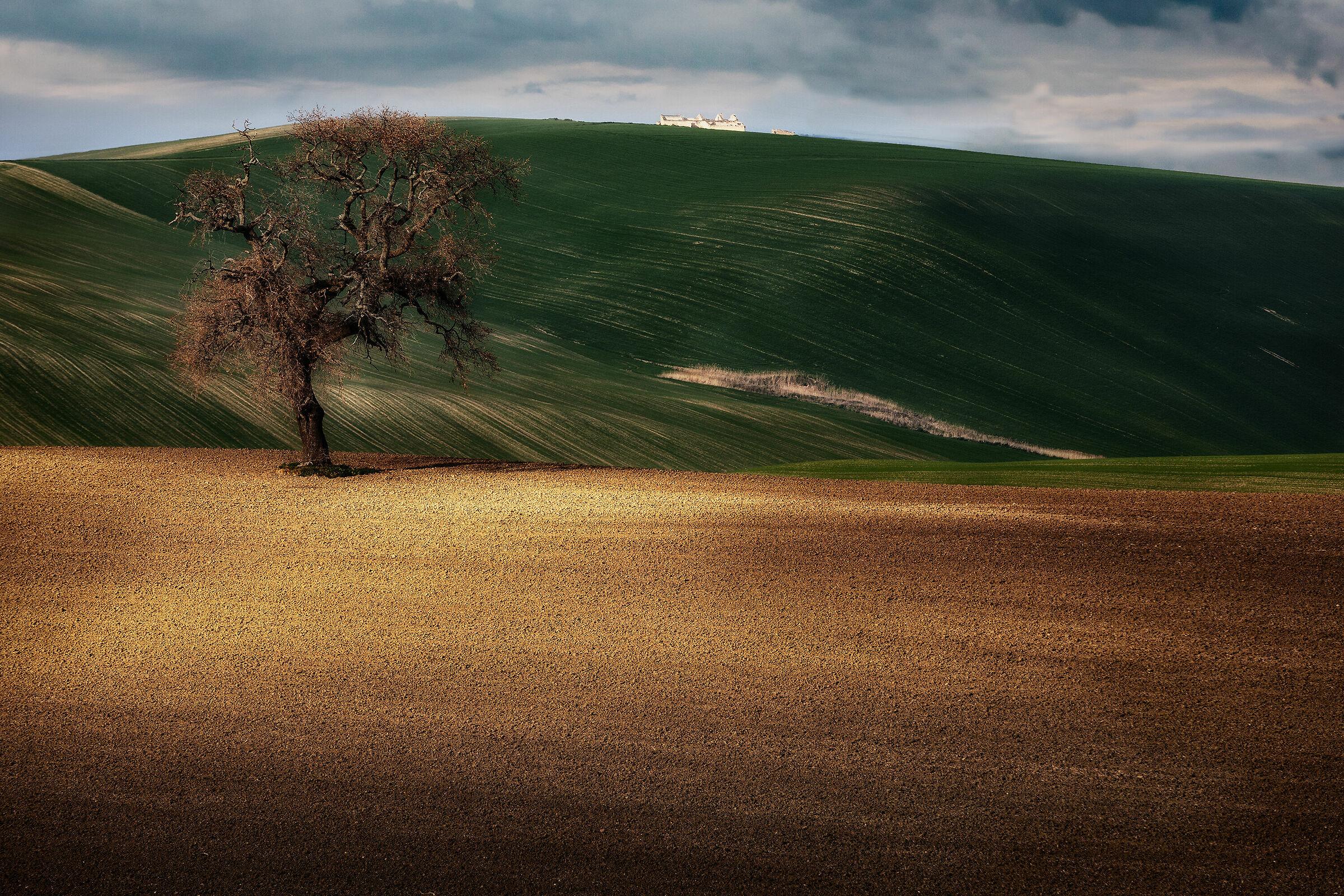Rural...
