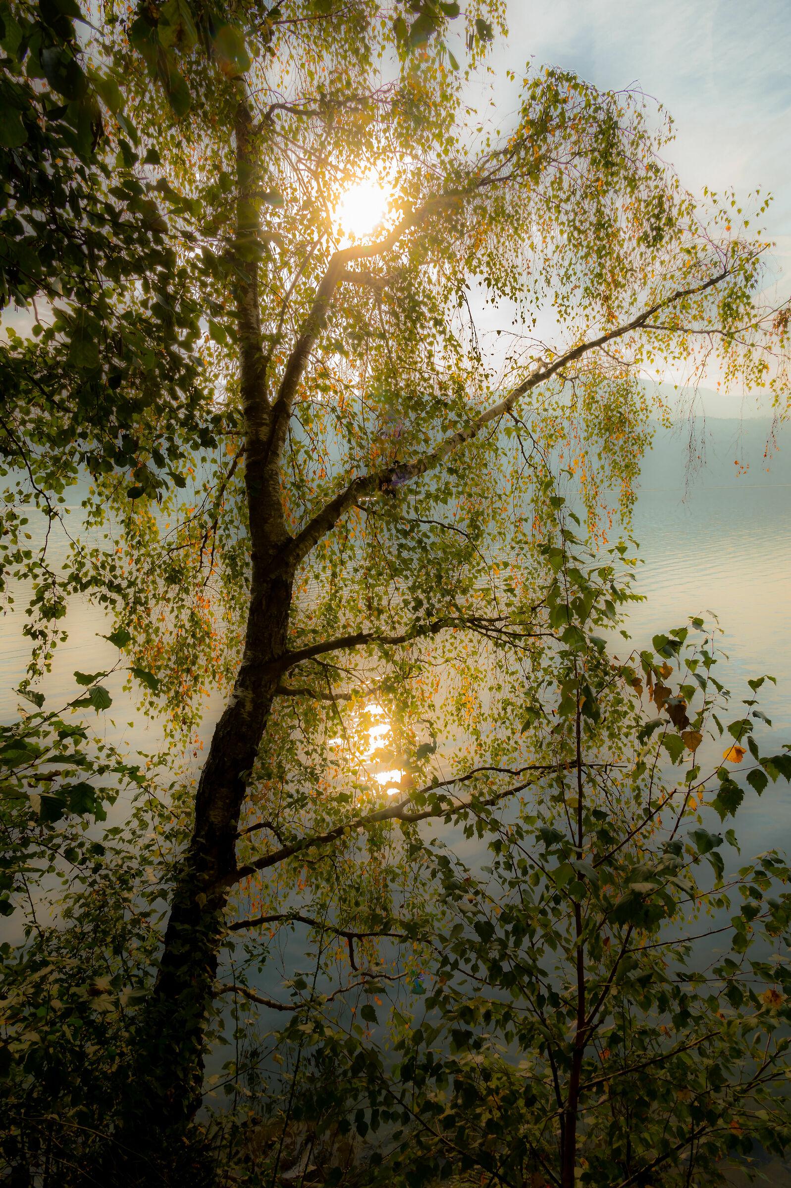 Il lago delle fate.......