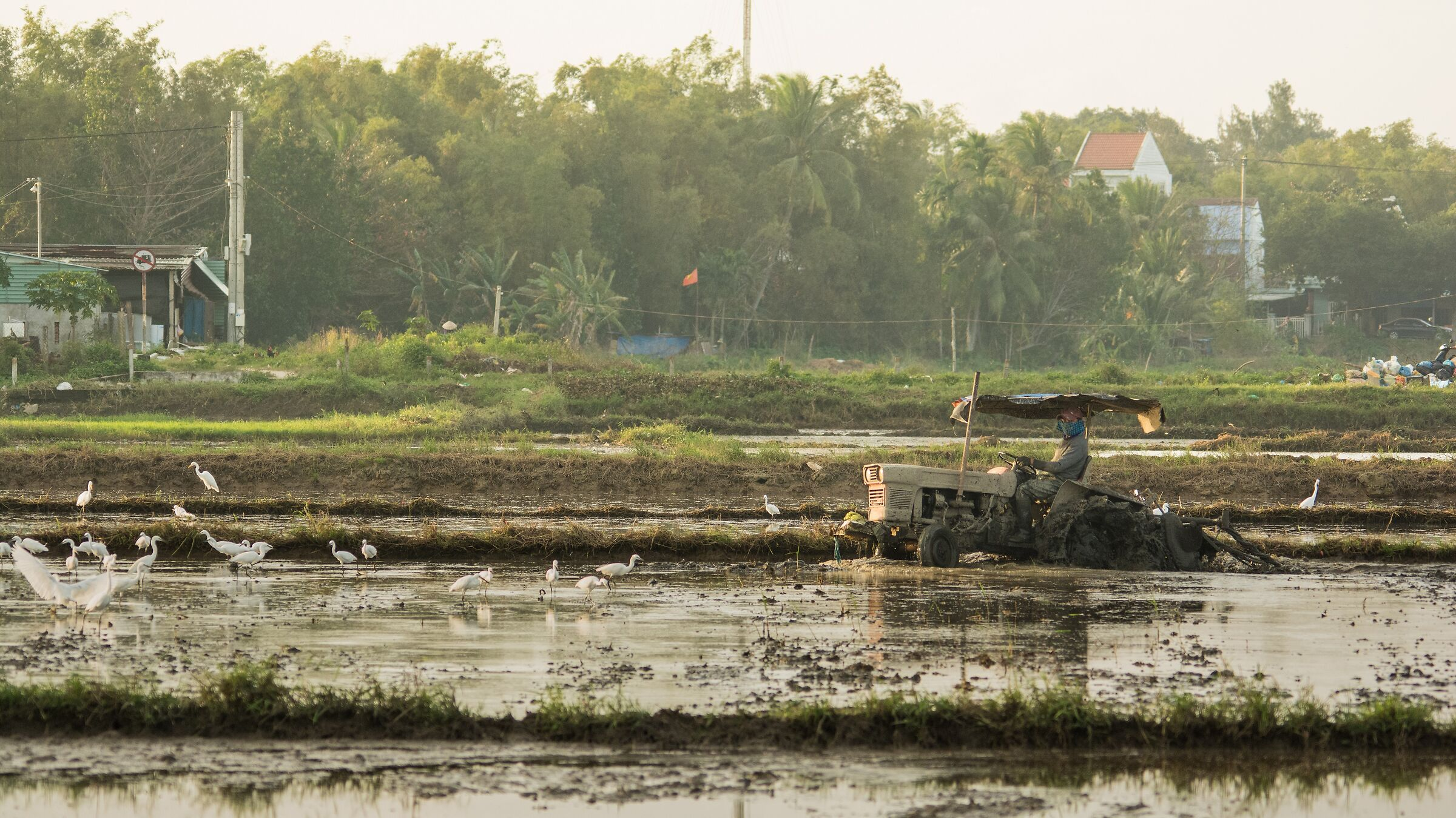 Vietnam-Work in the fields...