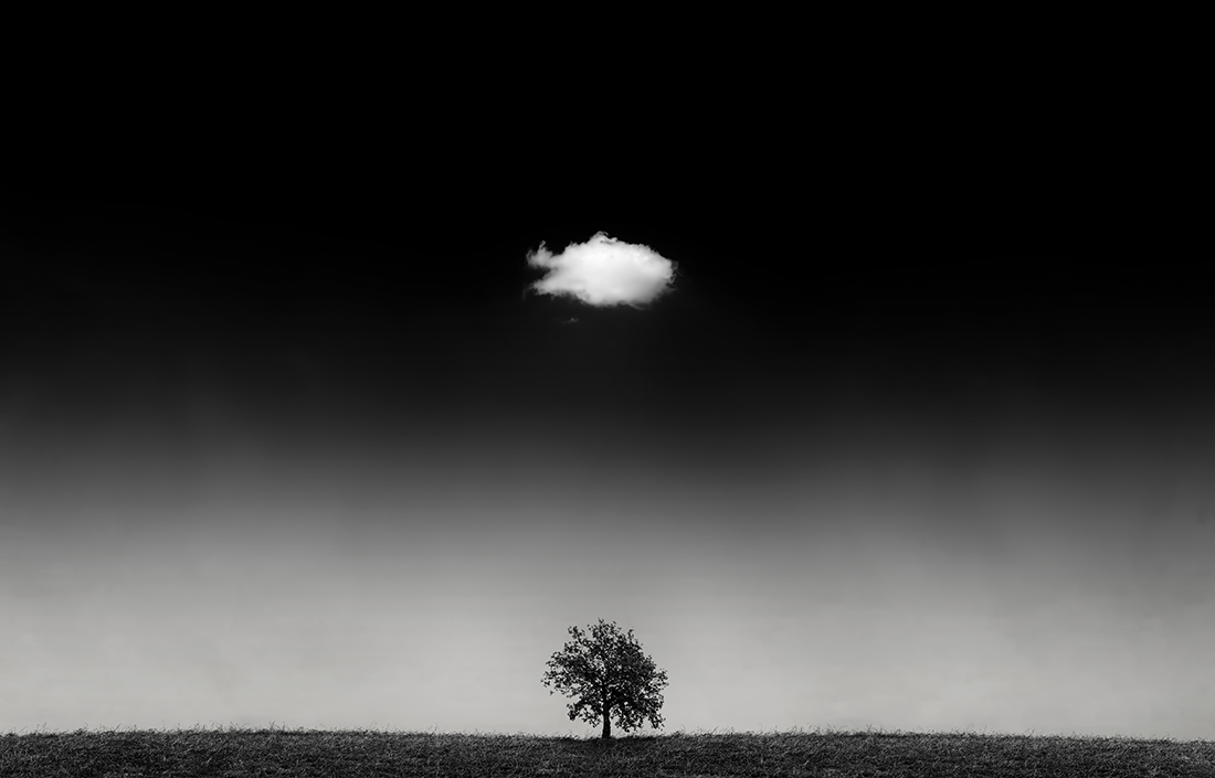 The cloud and the tree...