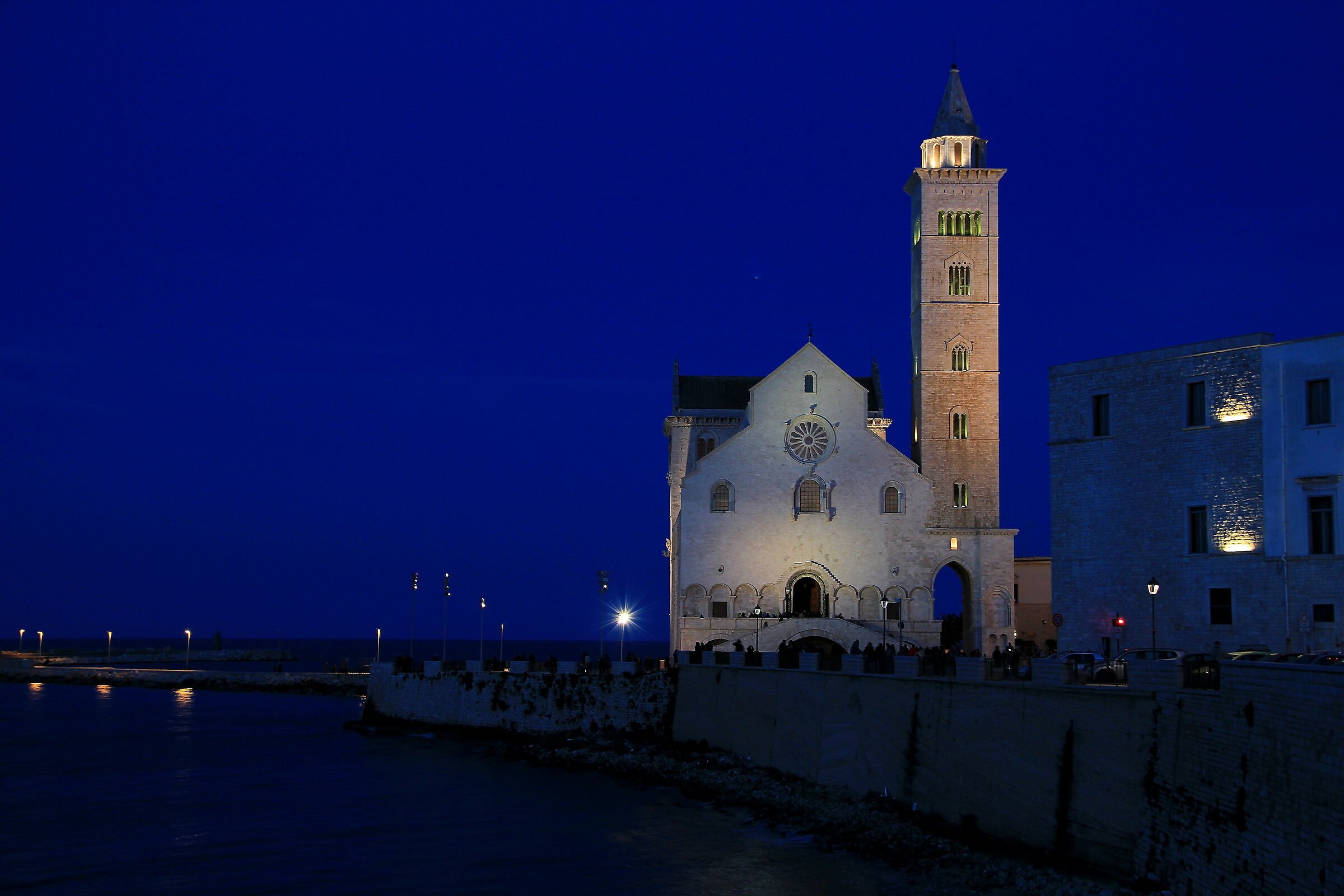 Trani. The Cathedral...