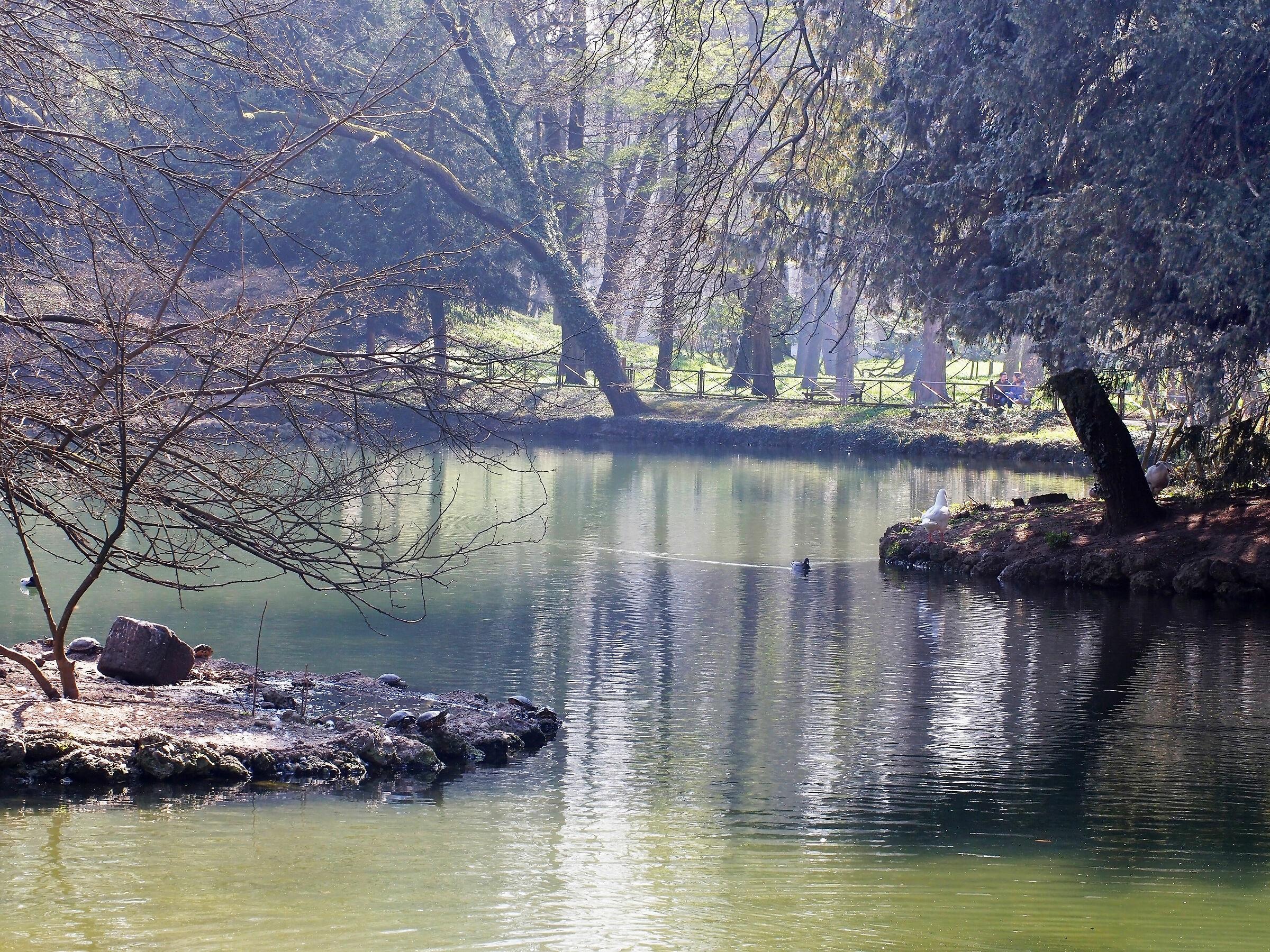 Spring Sun Pond Gardens Villa Reale Monza...