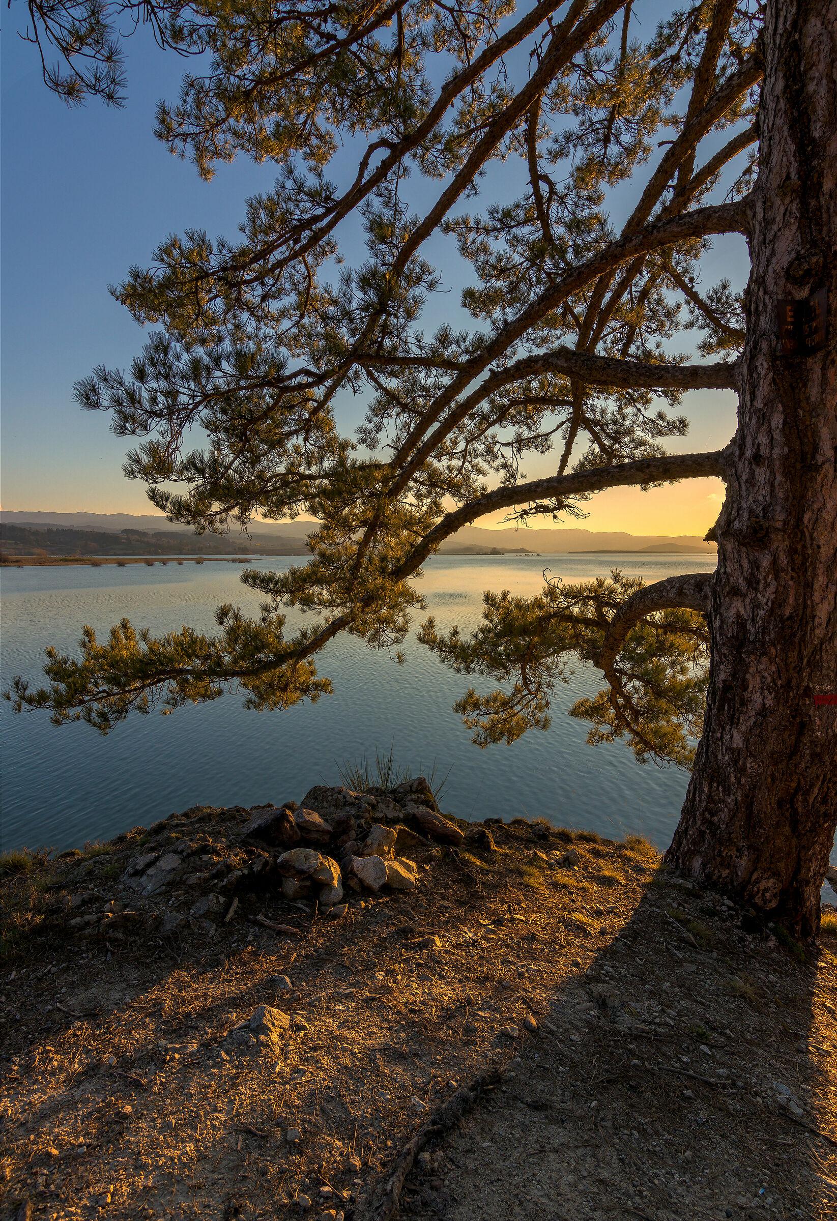 Lake Cecita (CS)...