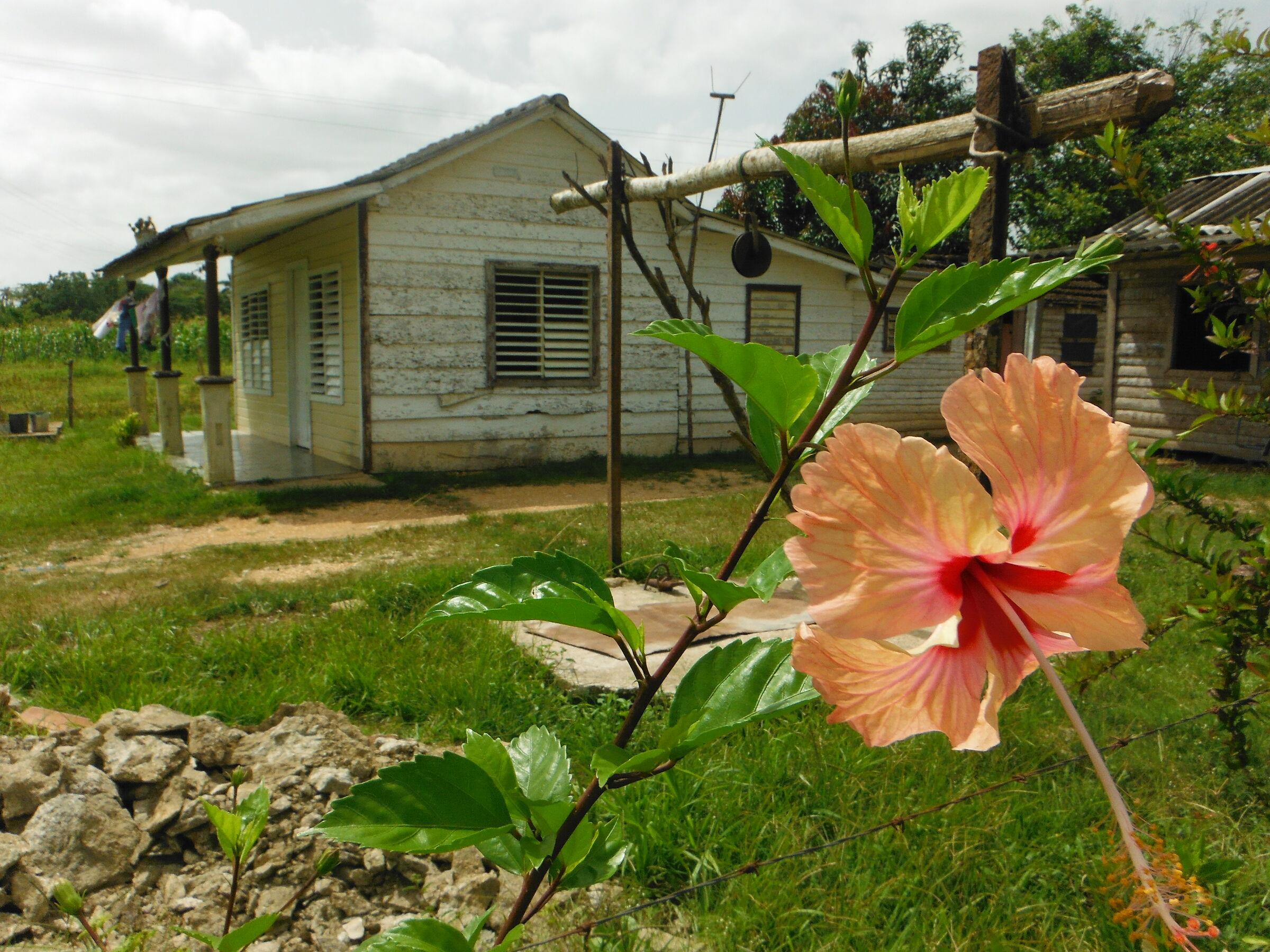 Cuba, Casa Campesina...