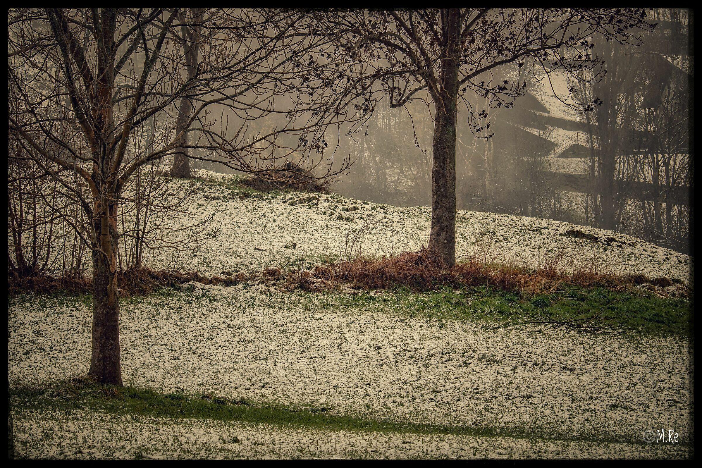 Snow in Spring...