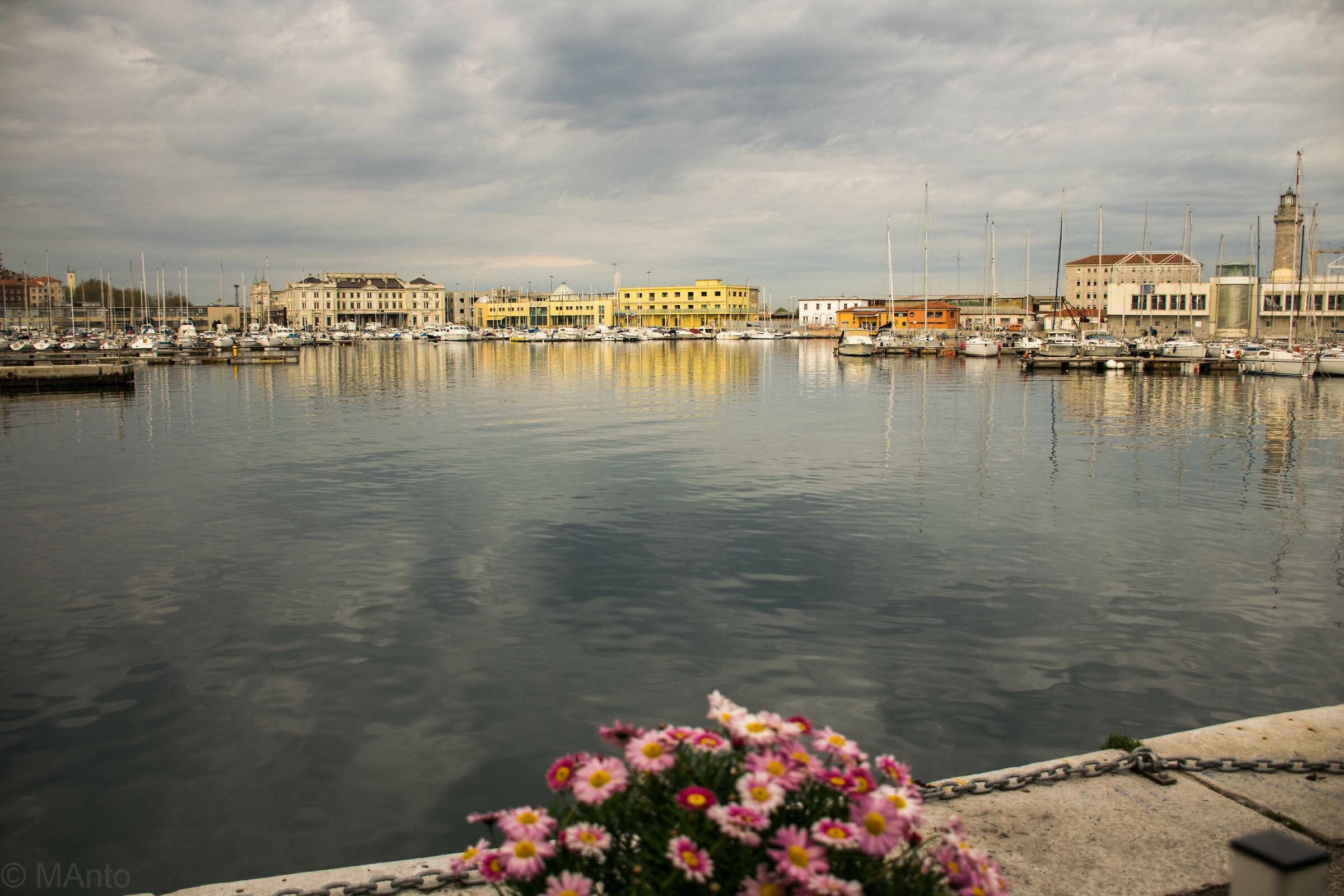 Trieste ...