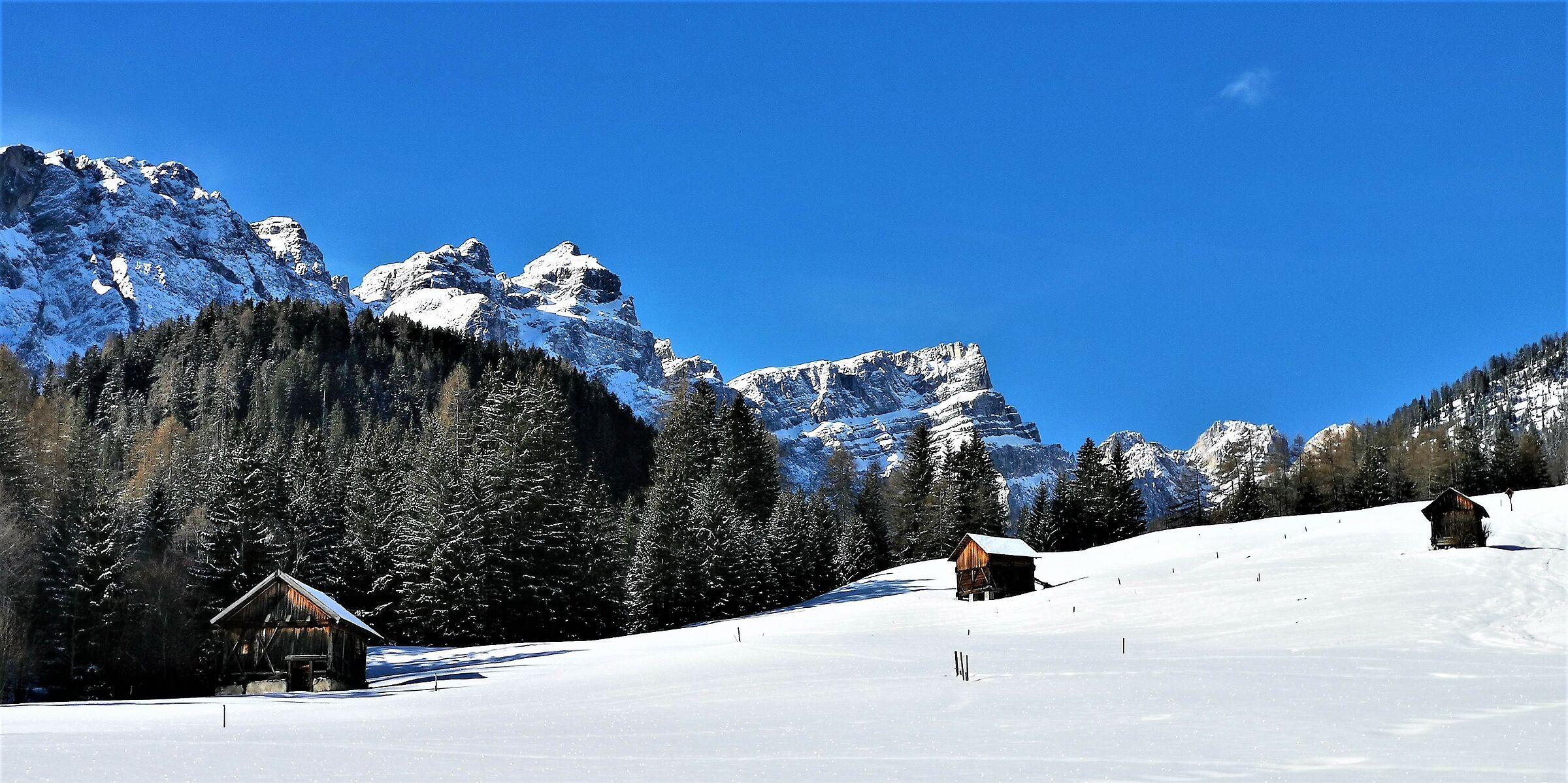 Hopefully last snow-1-...