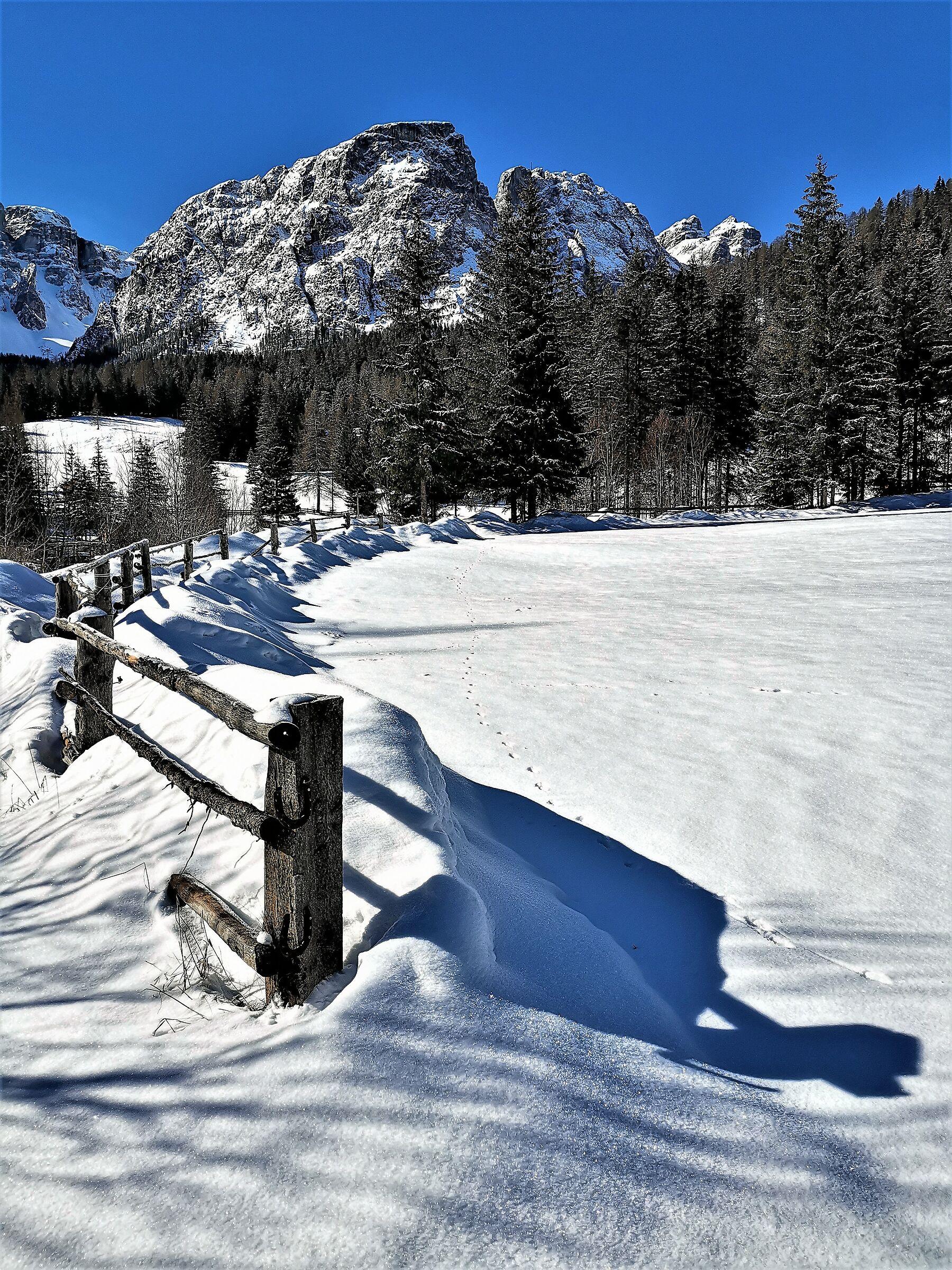 Si spera ultima neve -2-...