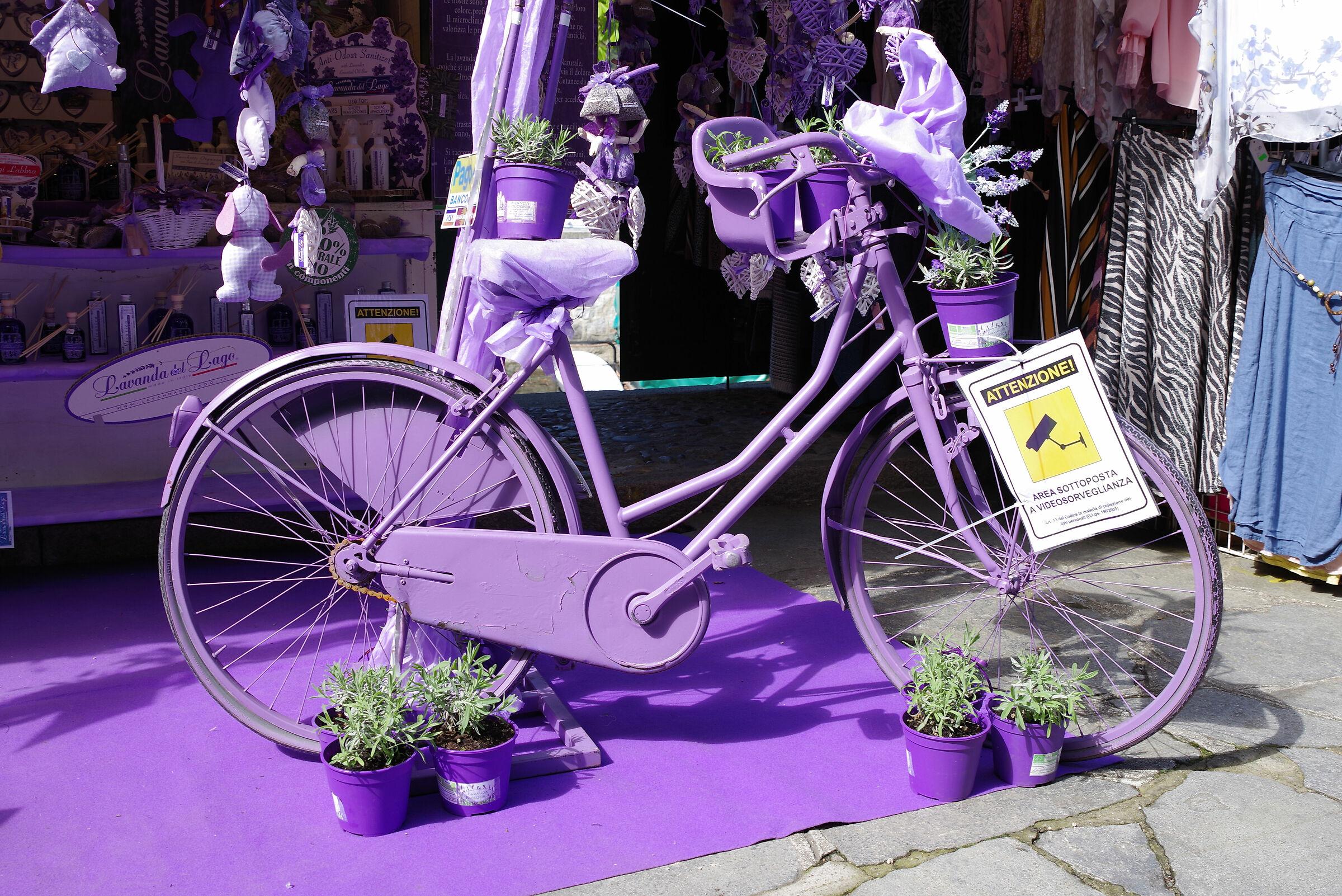 Other Lavender Bike...