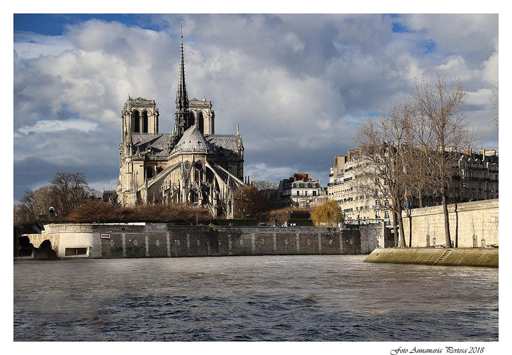 Notre Dame de Paris from the Bateau Mouche...