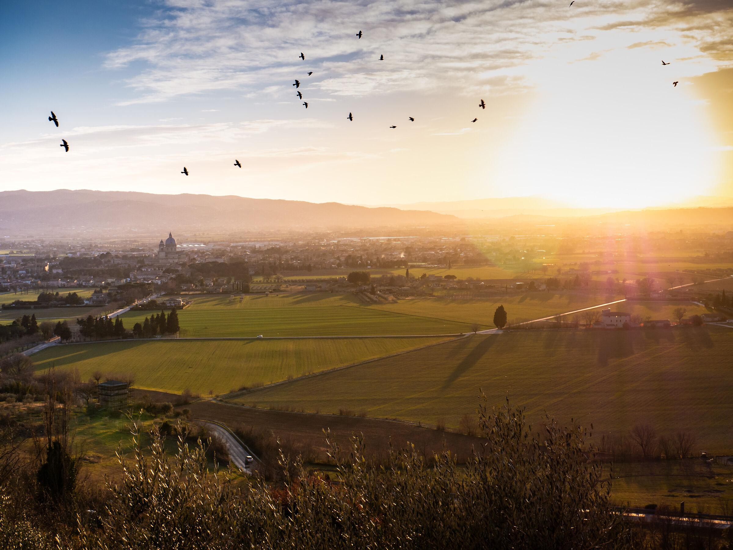 Vista da Assisi...