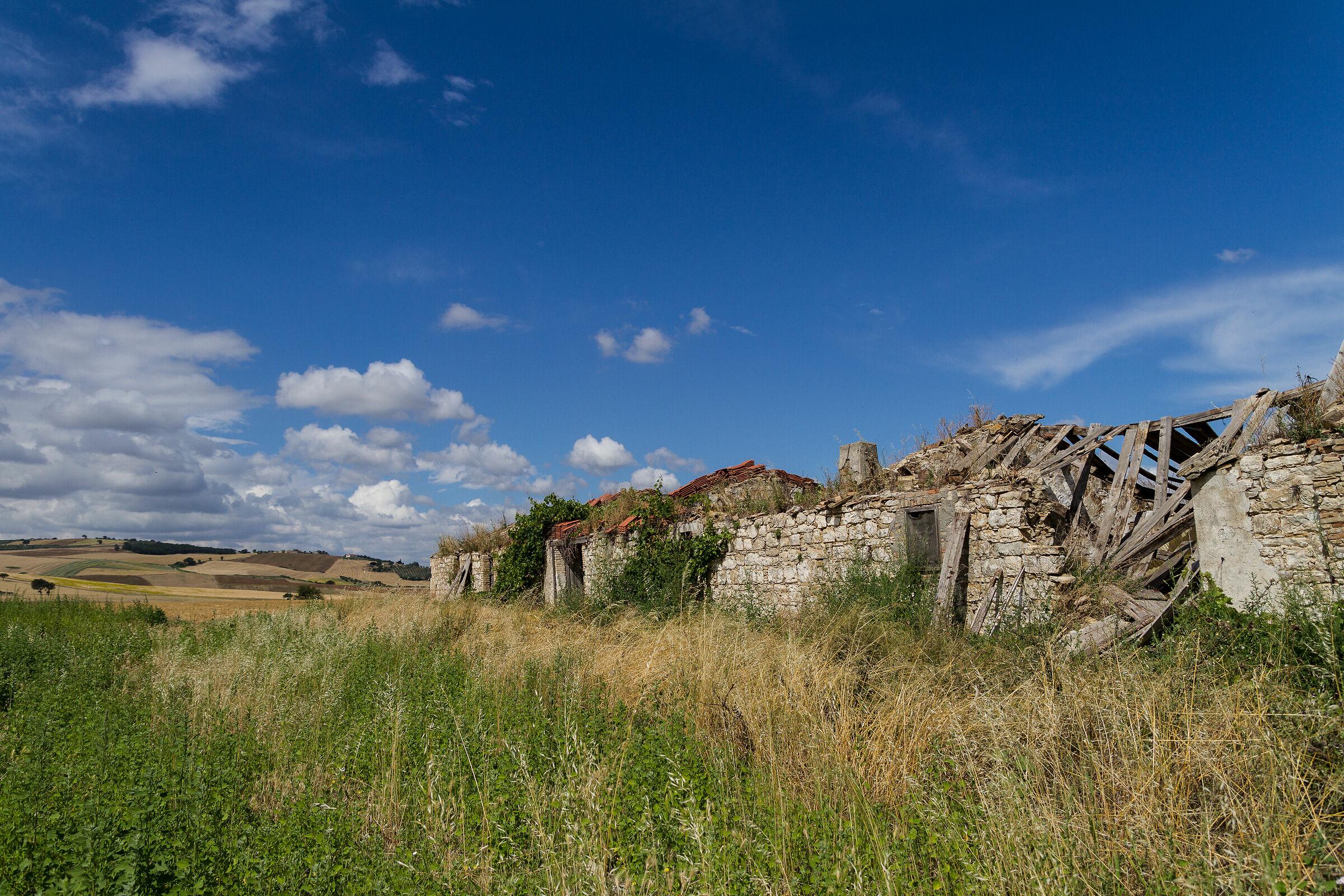 Ruins of peasant Civilization...