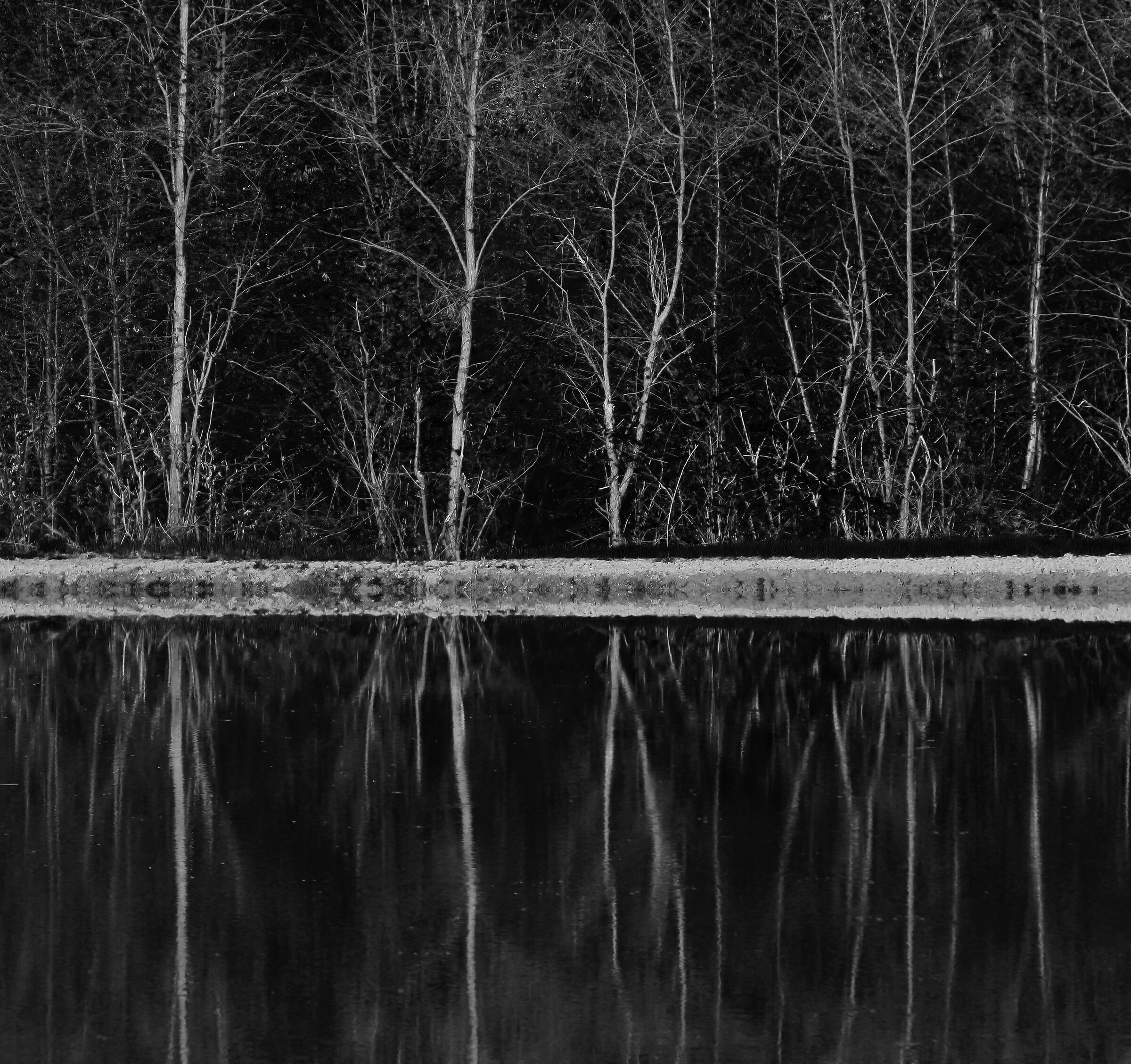 Black and white Reflections...
