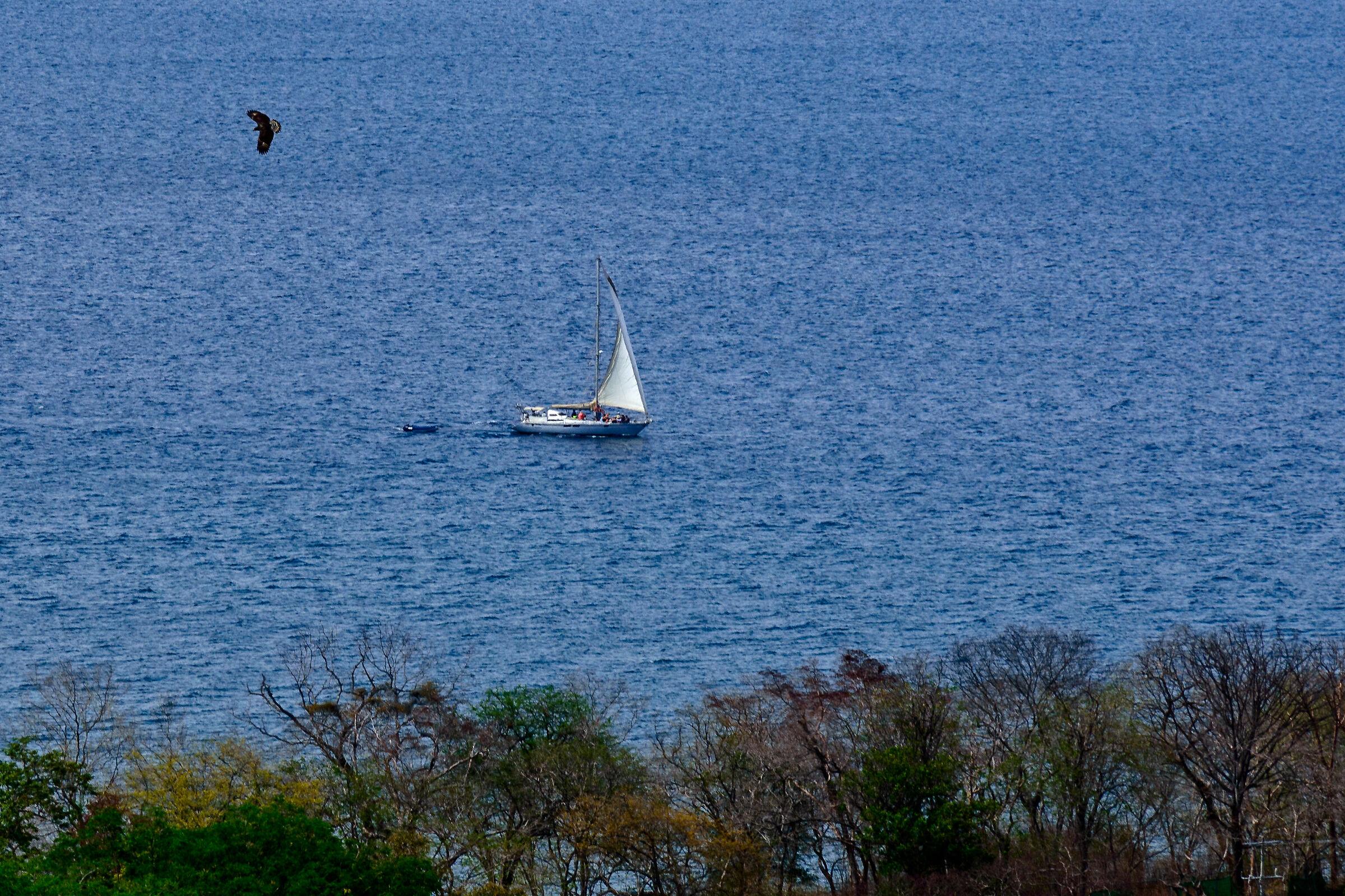 Sailing......