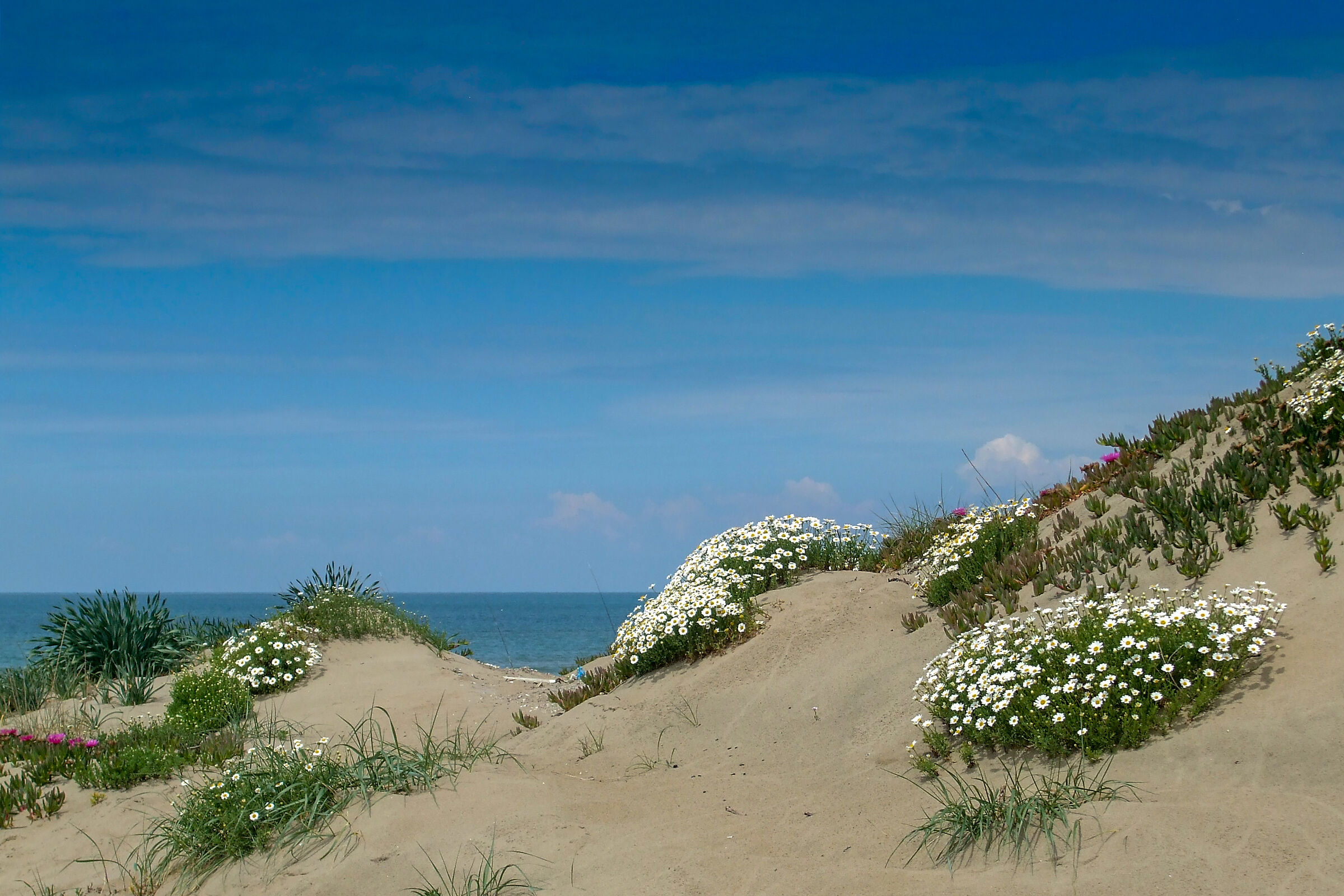 The look beyond the dunes...
