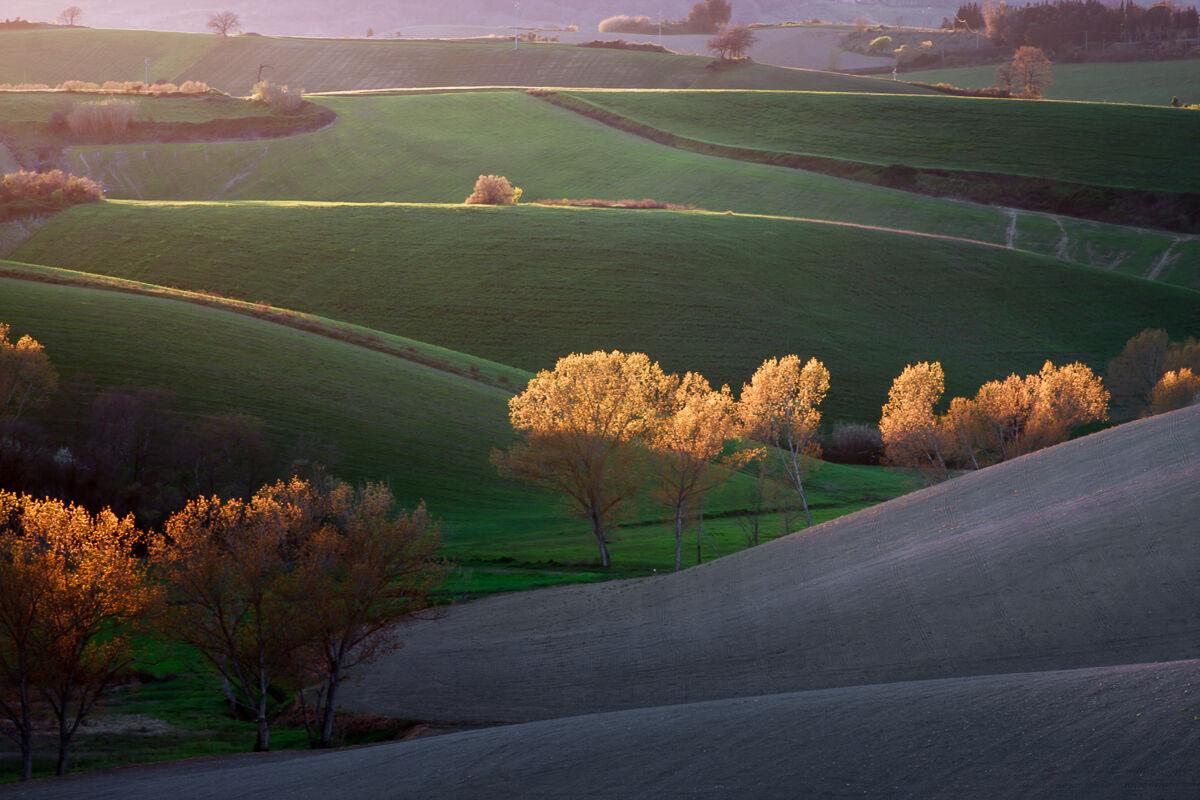 Hills of Light......