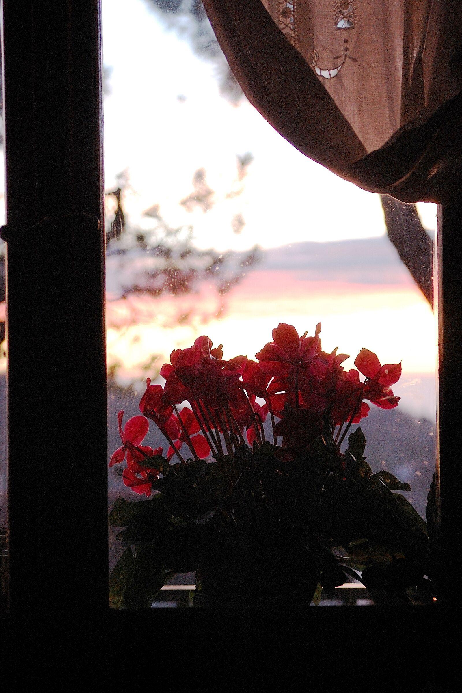 finestra di casa mia......