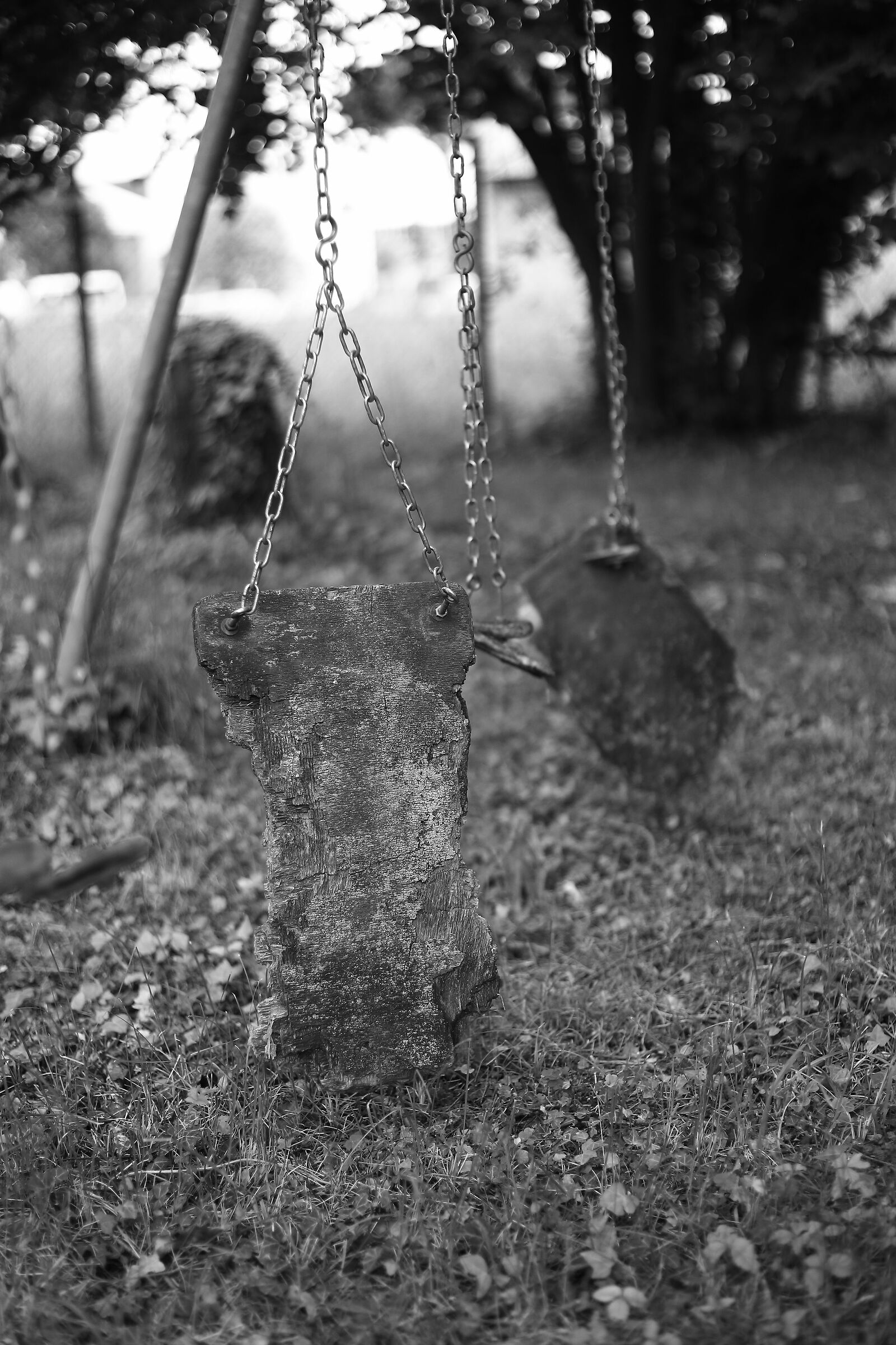 Old Swing...