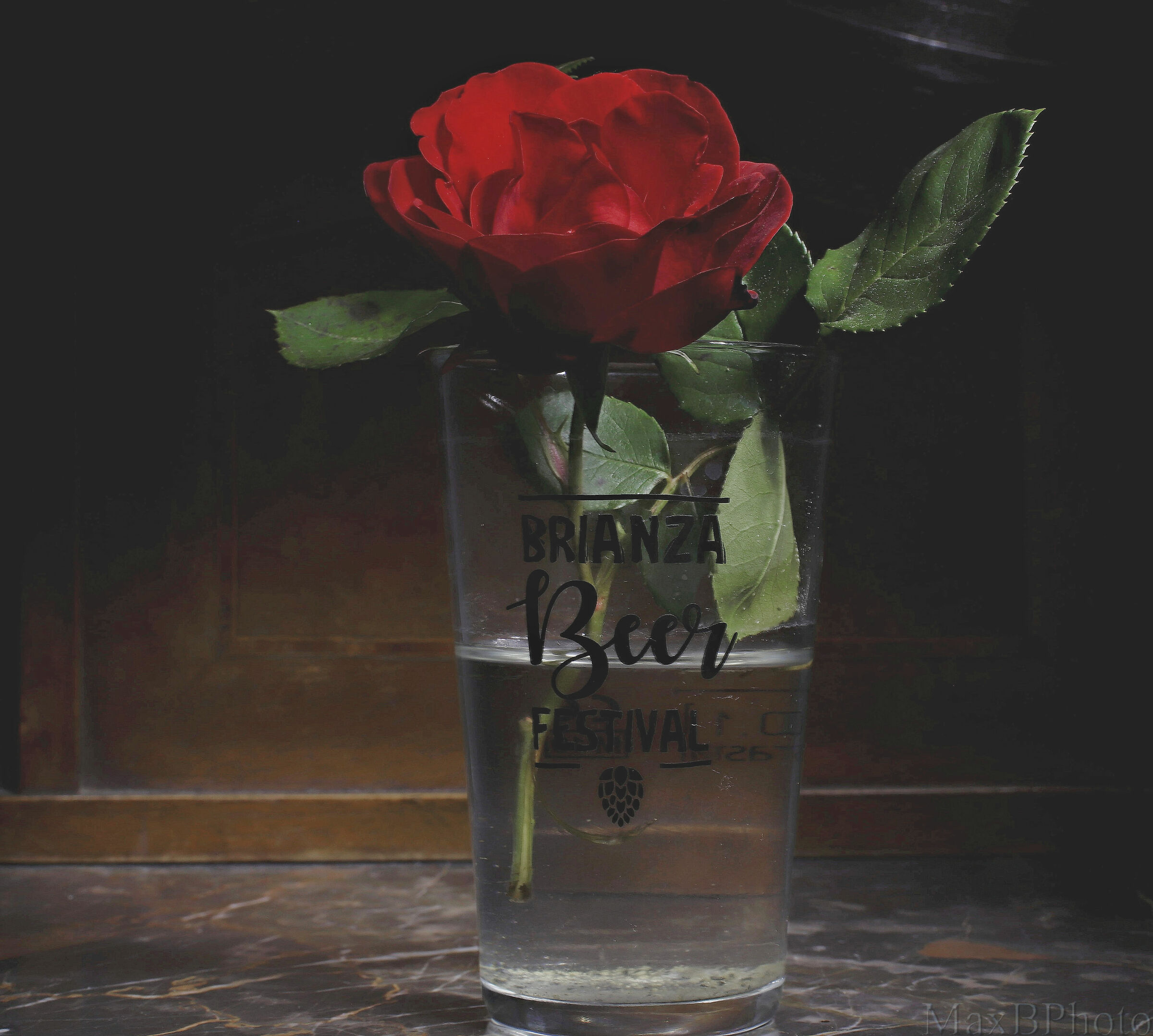 Beer and Roses...