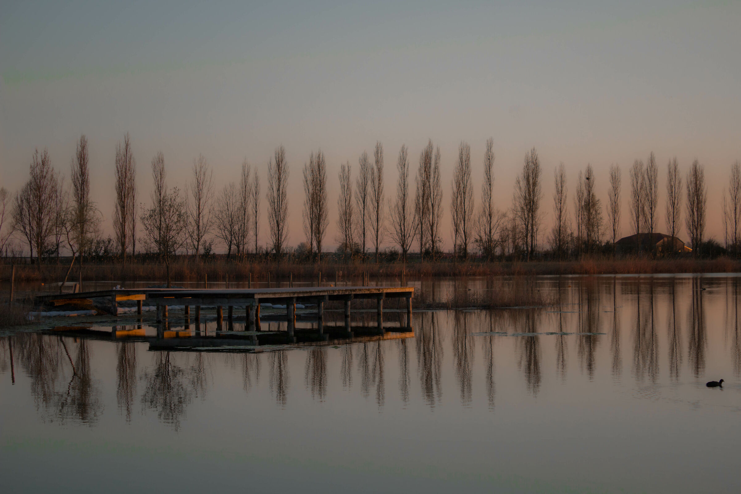 Lake Landscape...