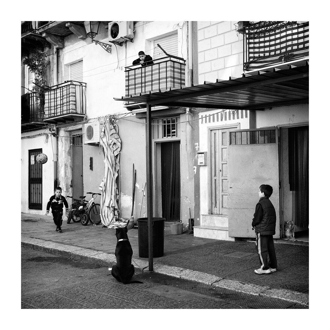 Celestial Geometries. Palermo...