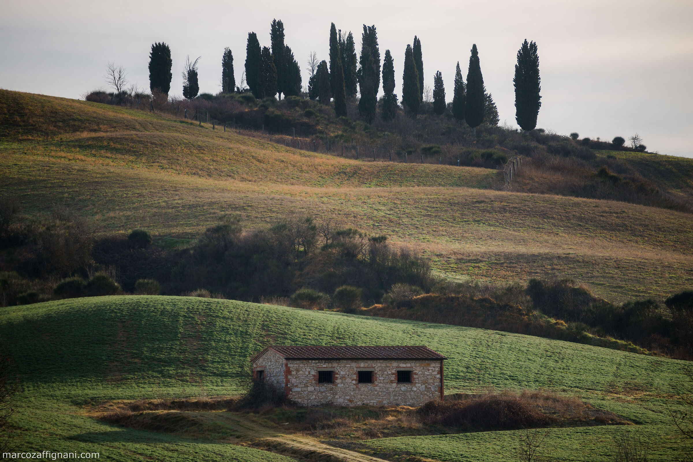 Val D'orcia in Curves...