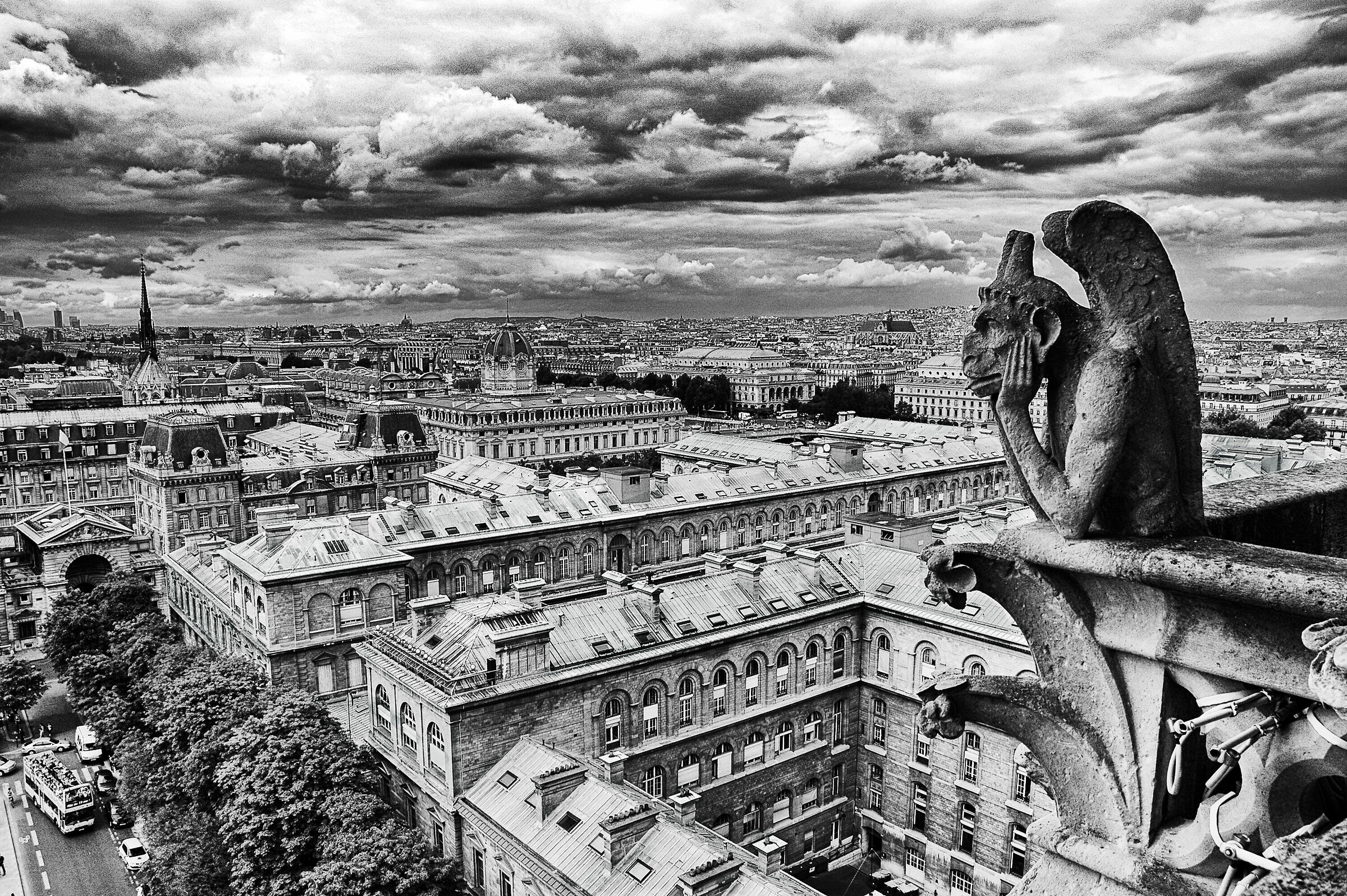 Before the disaster (Paris view from Notre Dame)...