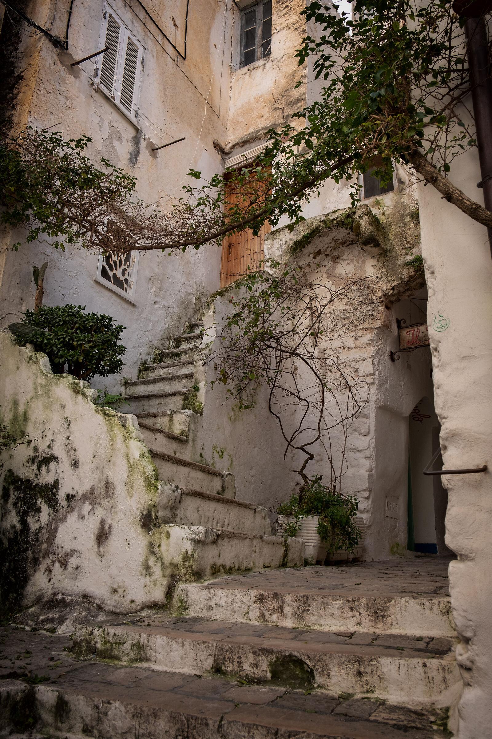 Alleys and ladders in Sperlonga...