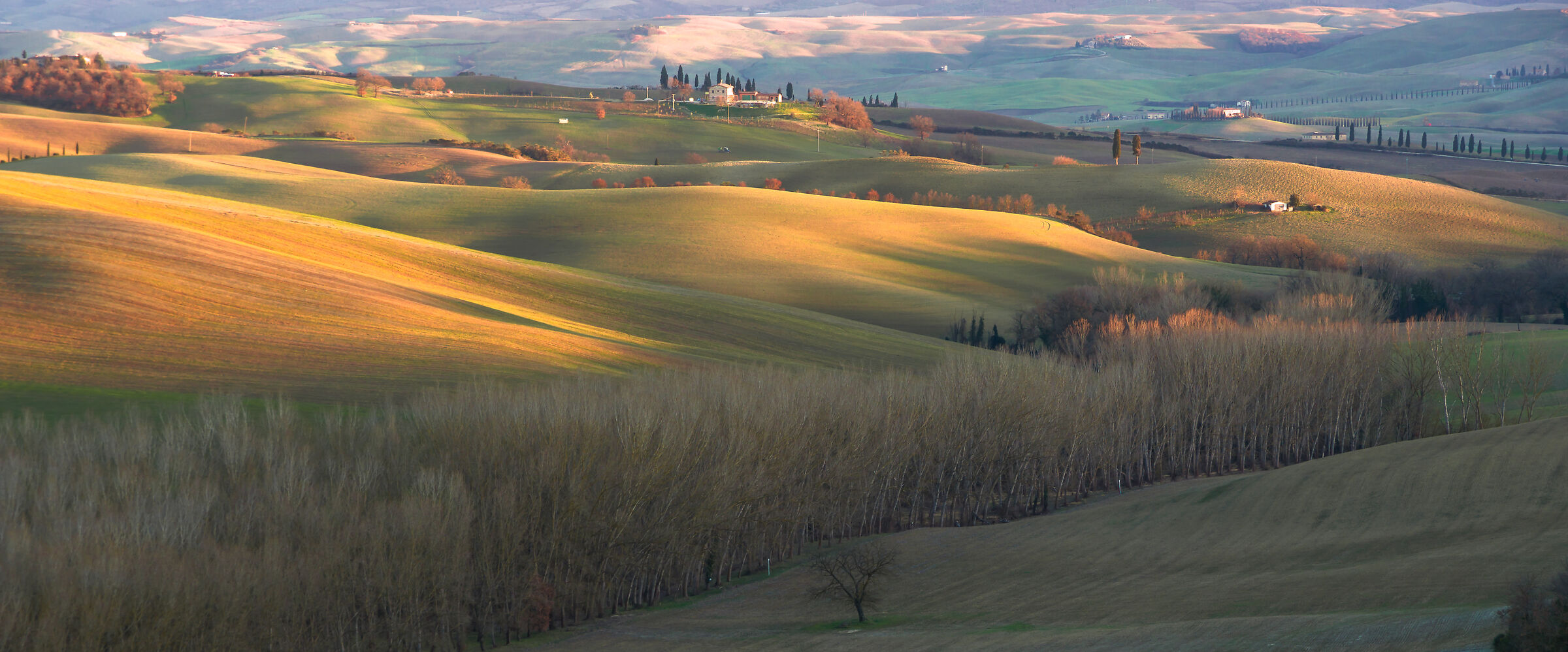 Last lights in the hills near San Quirico d'orcia...