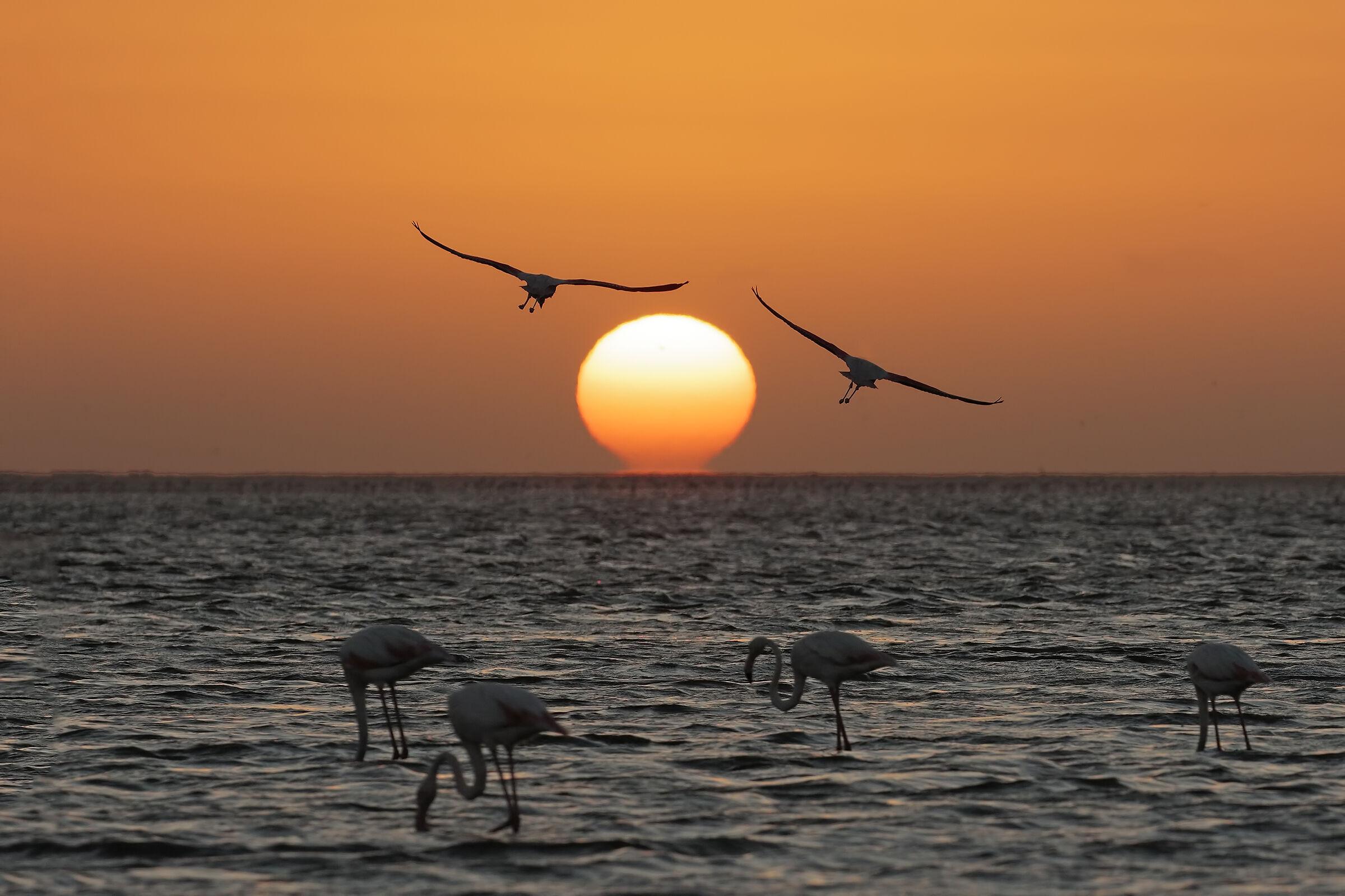 Sunset on the Ocean...