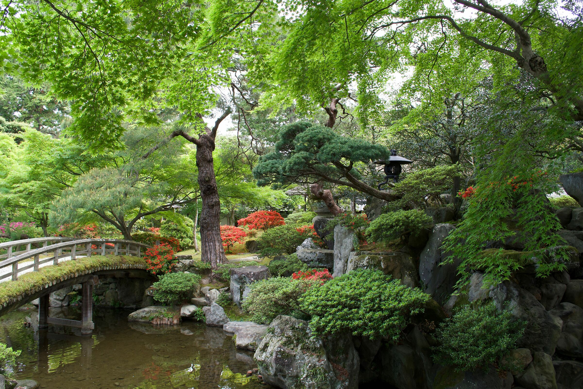 Garden in the Imperial Palace...
