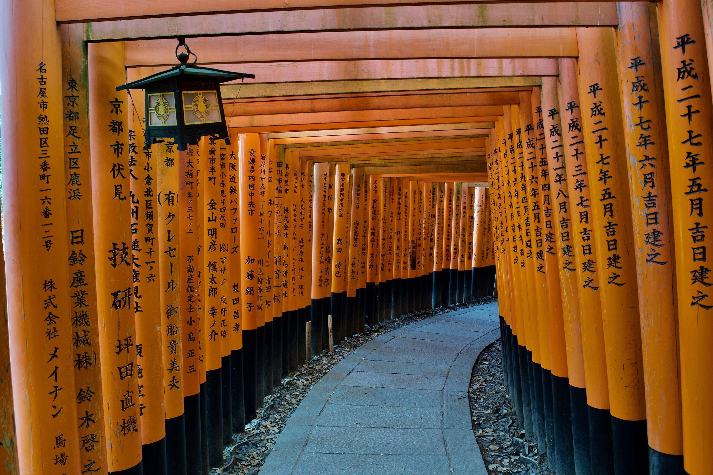 Fushimi Inari Taisha...
