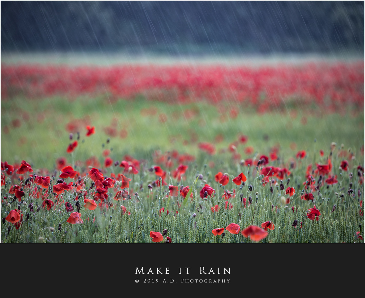 Make it Rain...