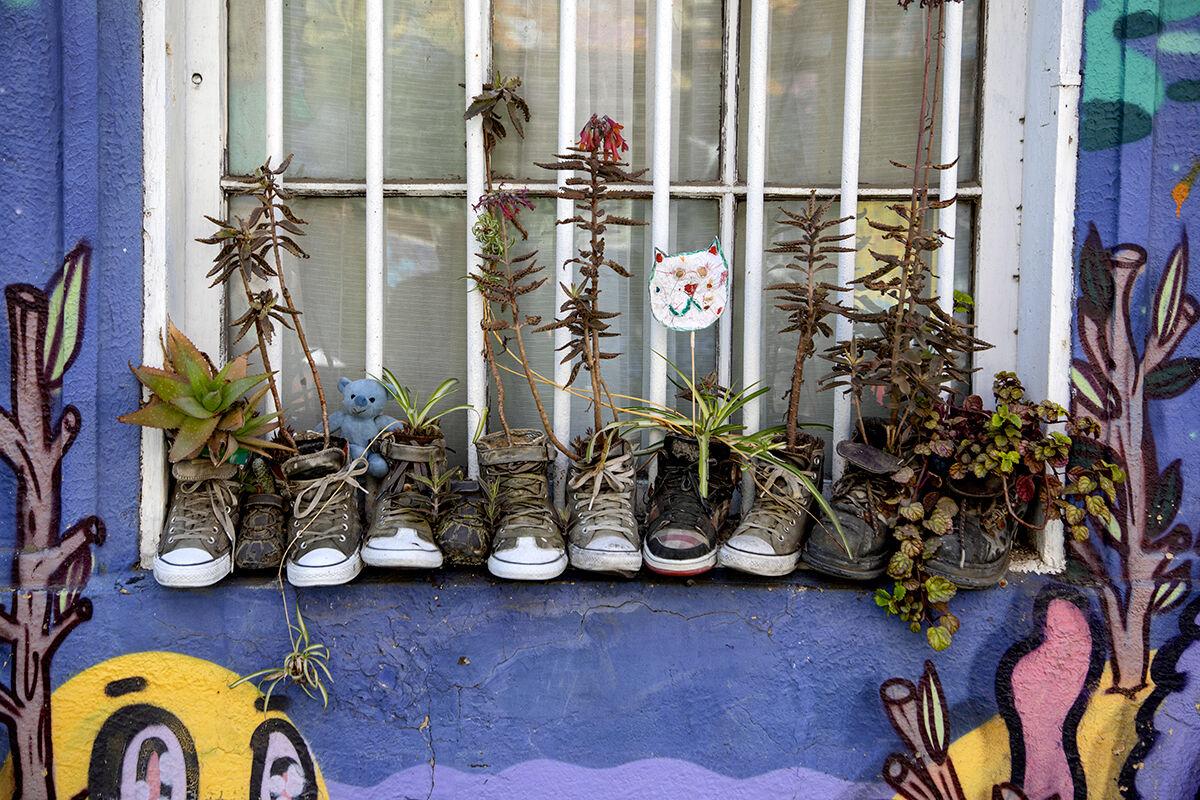 The planter...