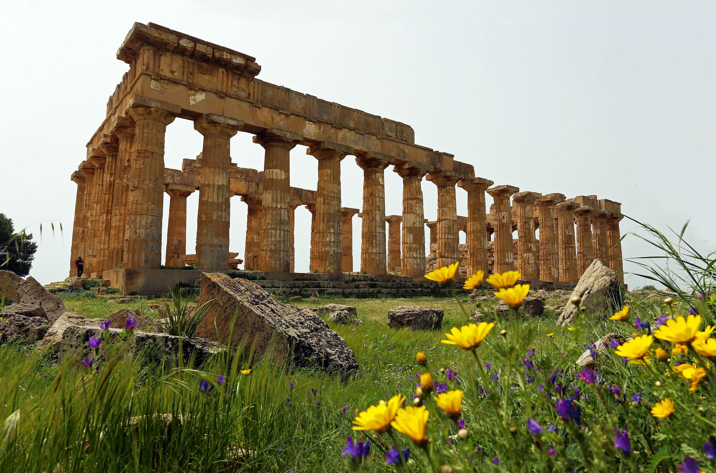 Temple of Hera Selinunte...