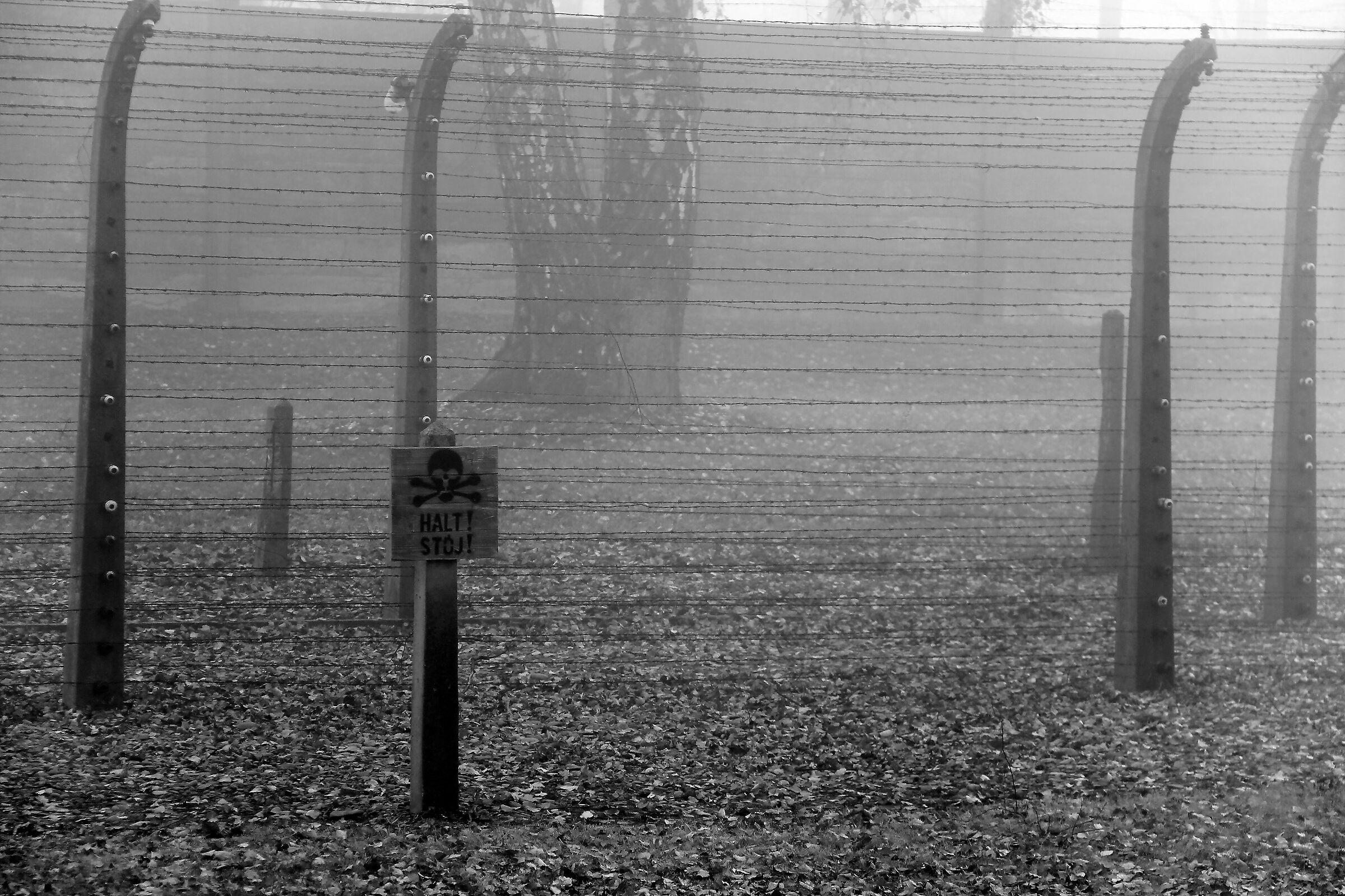 Auschwitz...