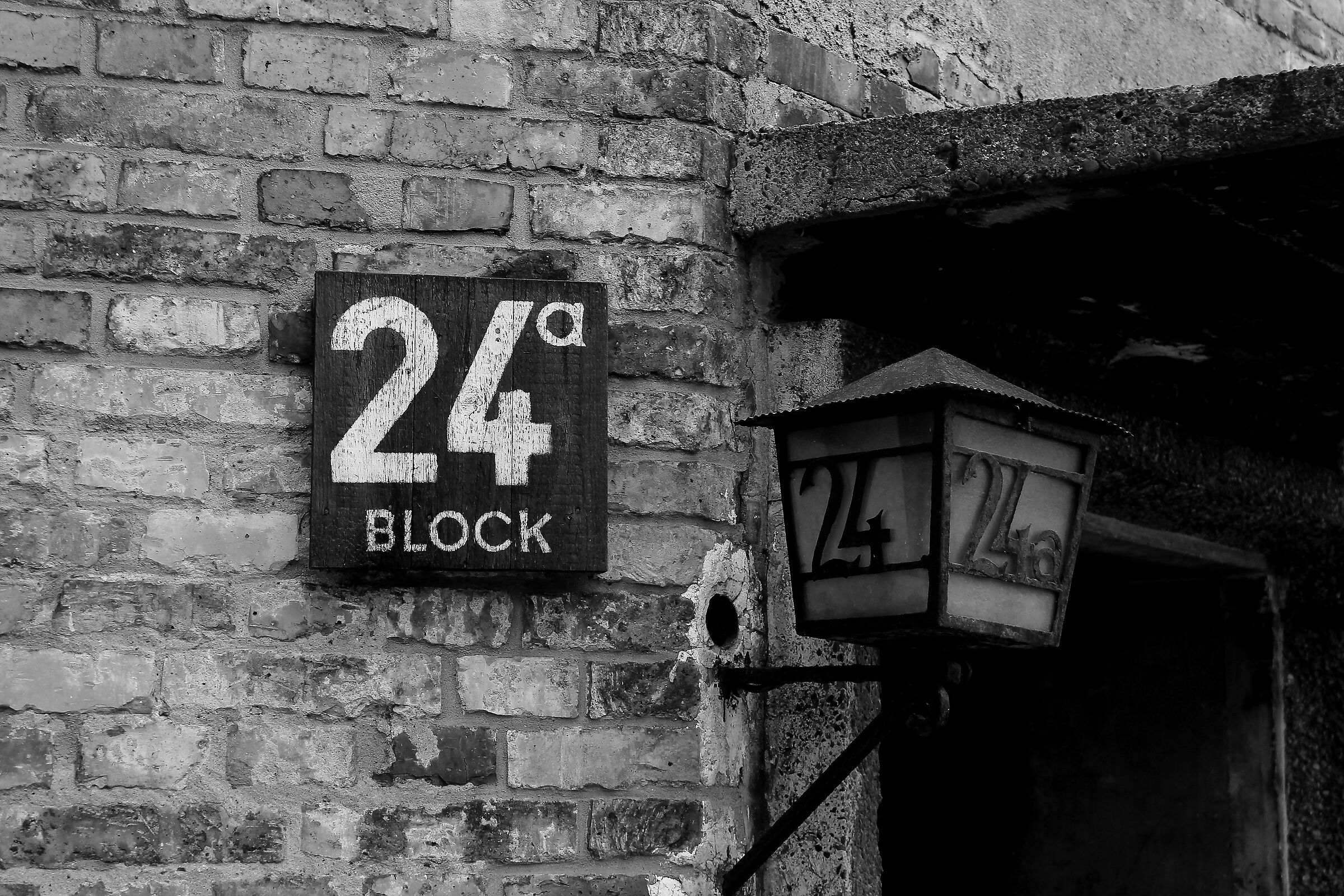 Auschwitz. Il Blocco 24...