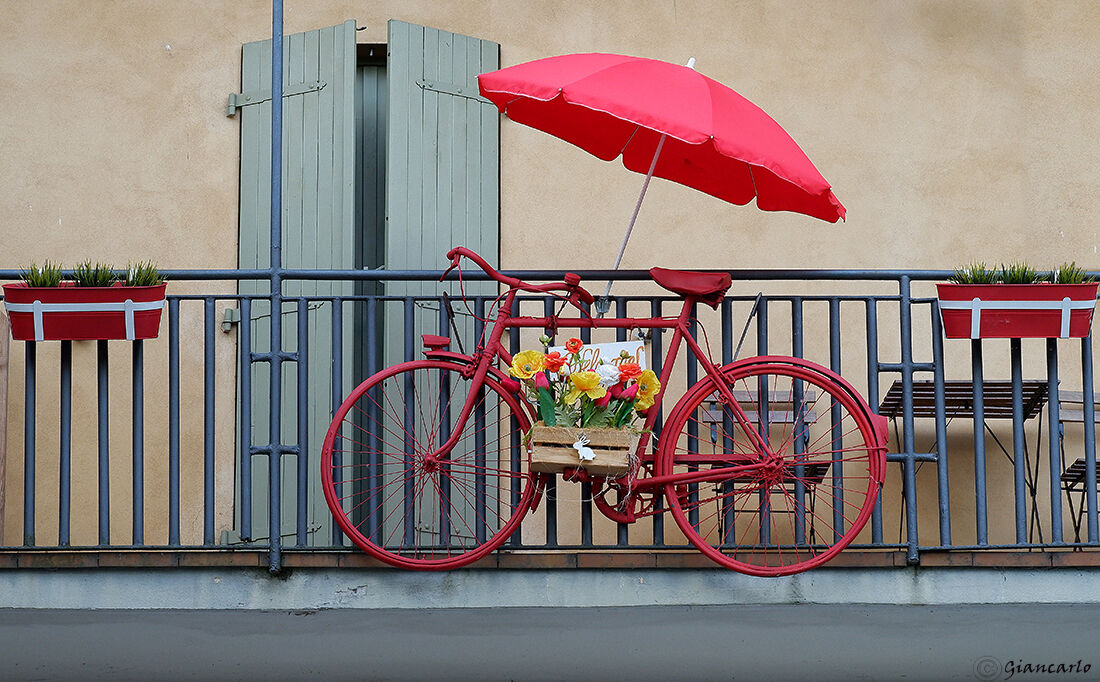 The sympathy that inspires the bicycle...