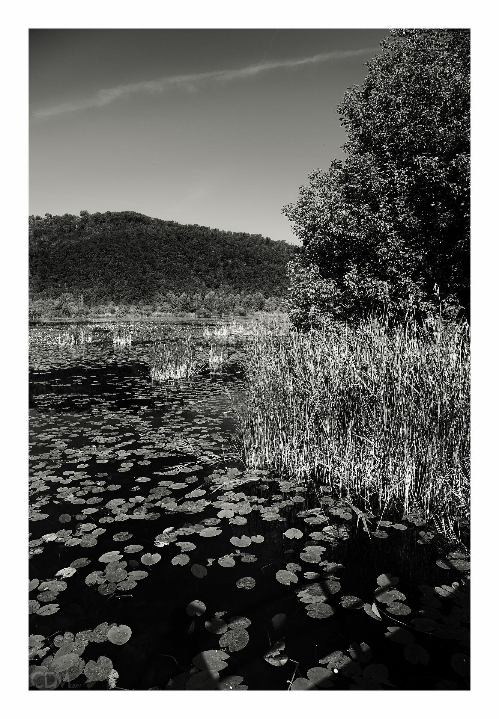 lago di Fimon...