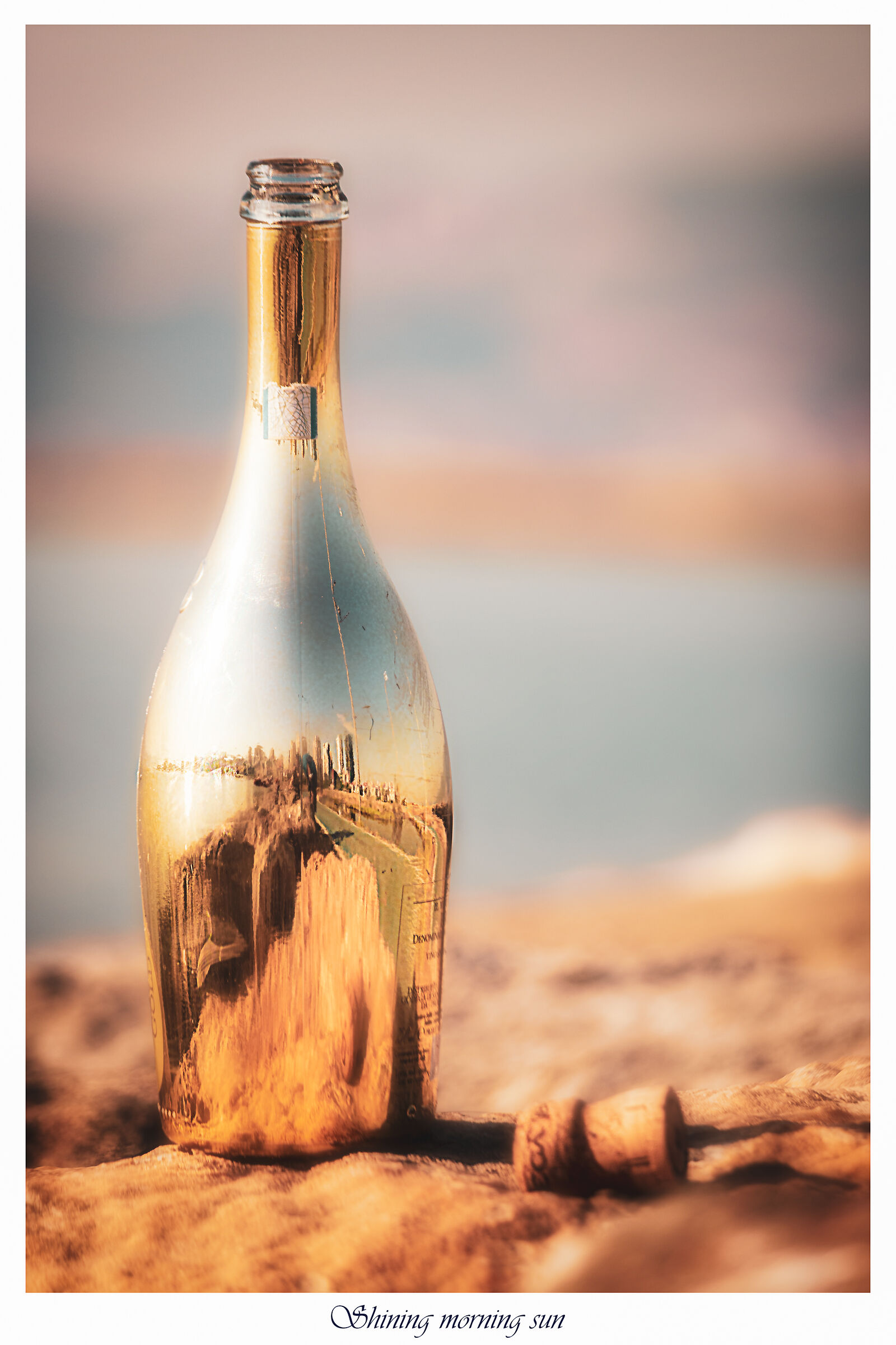 Shining morning sun on a cheap champagne bottle...