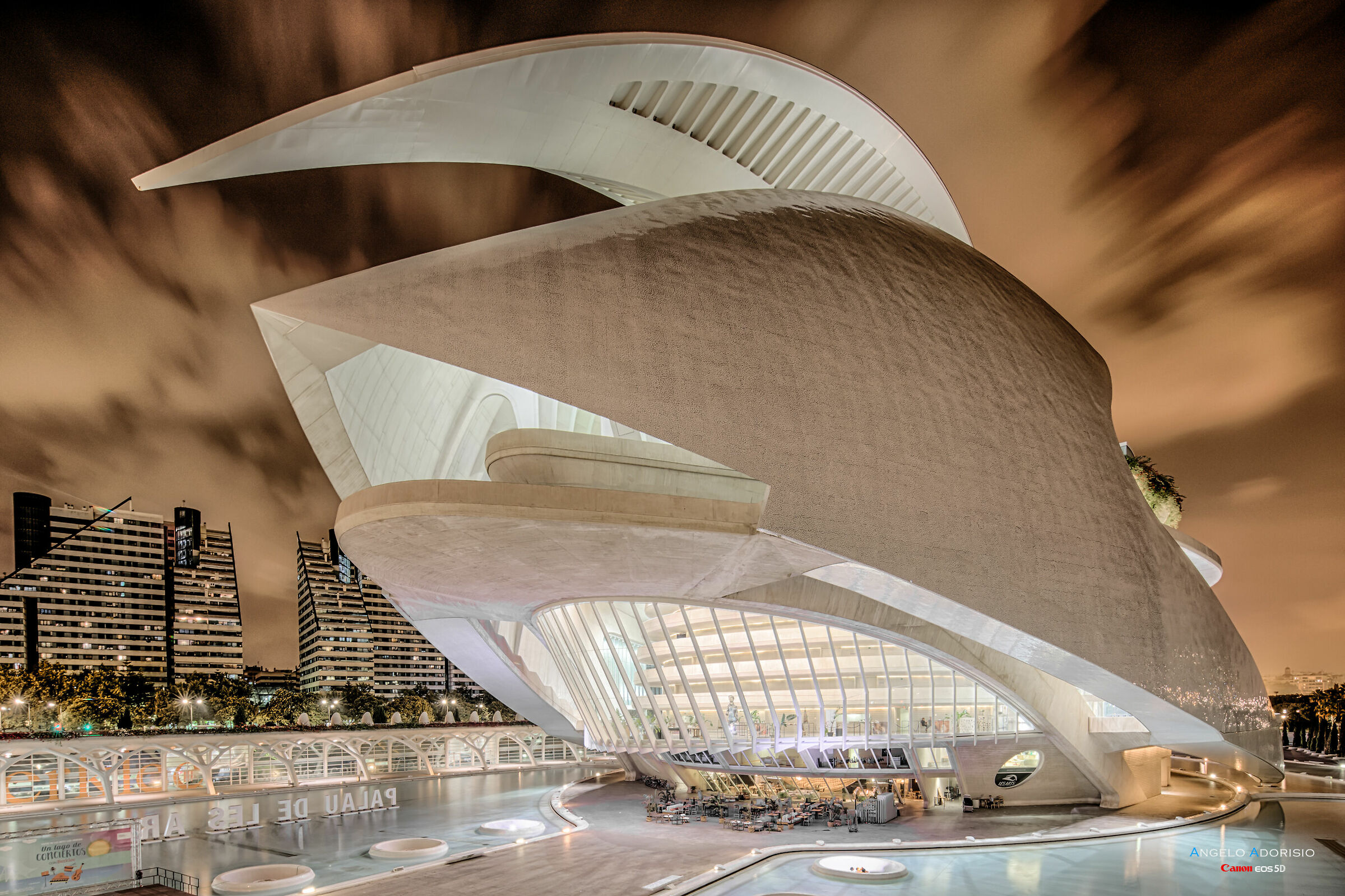 Valencia - Palace of the Arts...