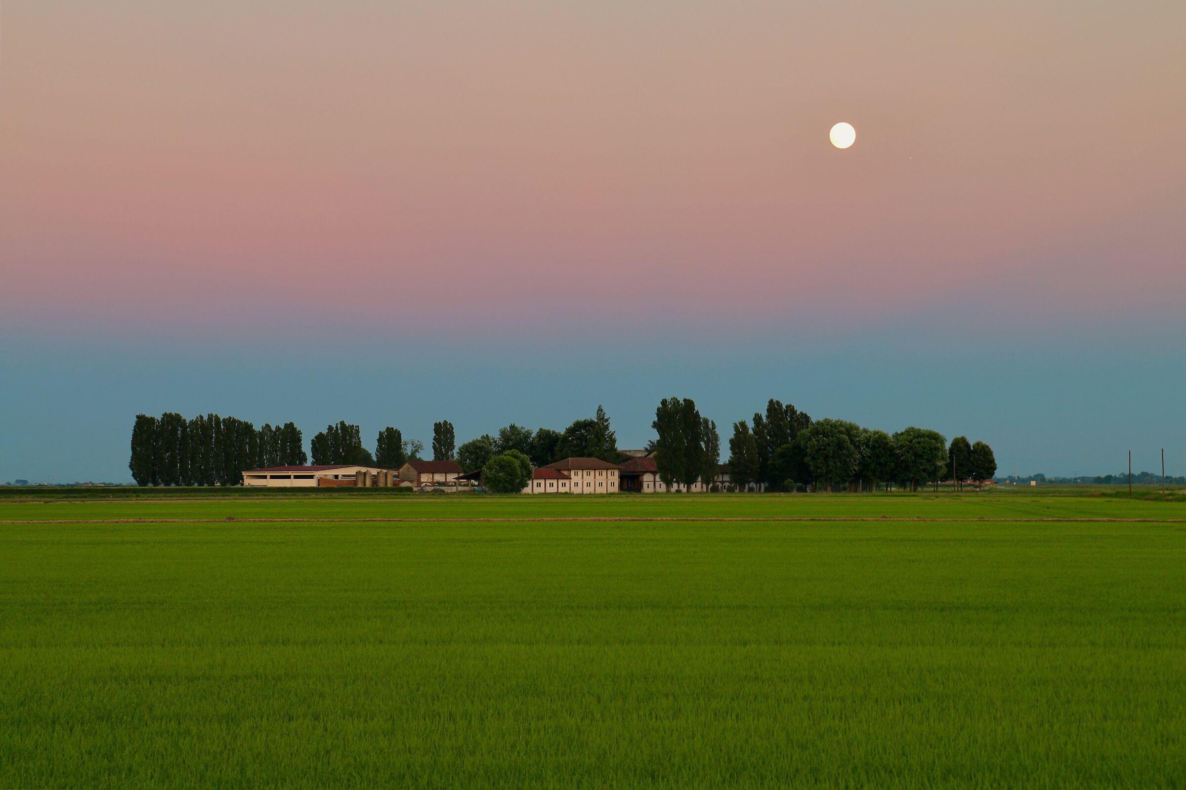 Sunset in the plain, afa a gogo. ...