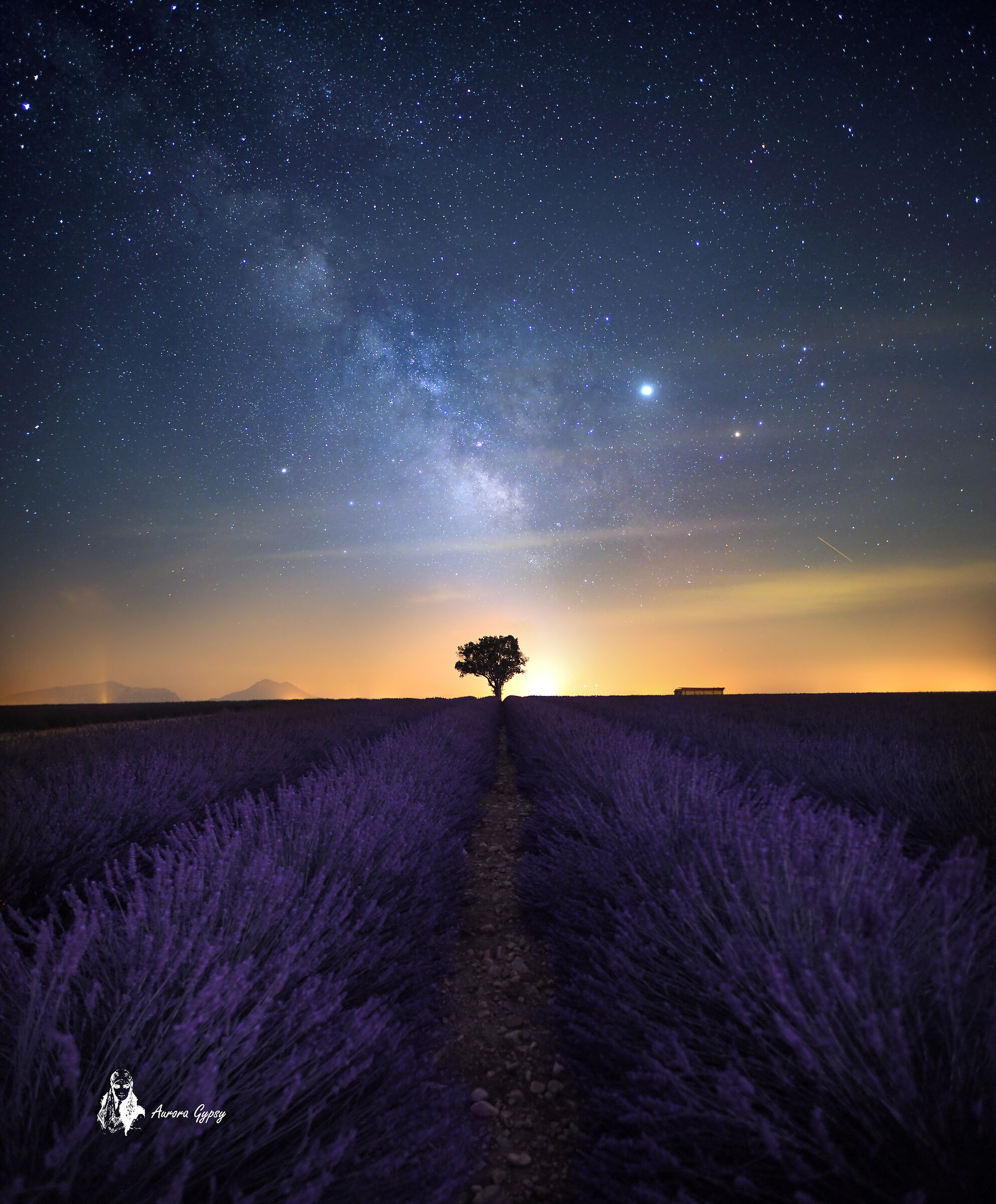 Stardust...