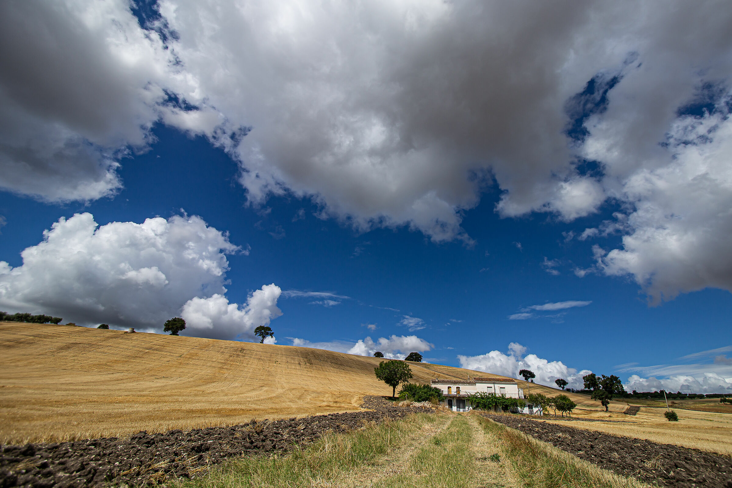 Stubble and clouds with masseria...