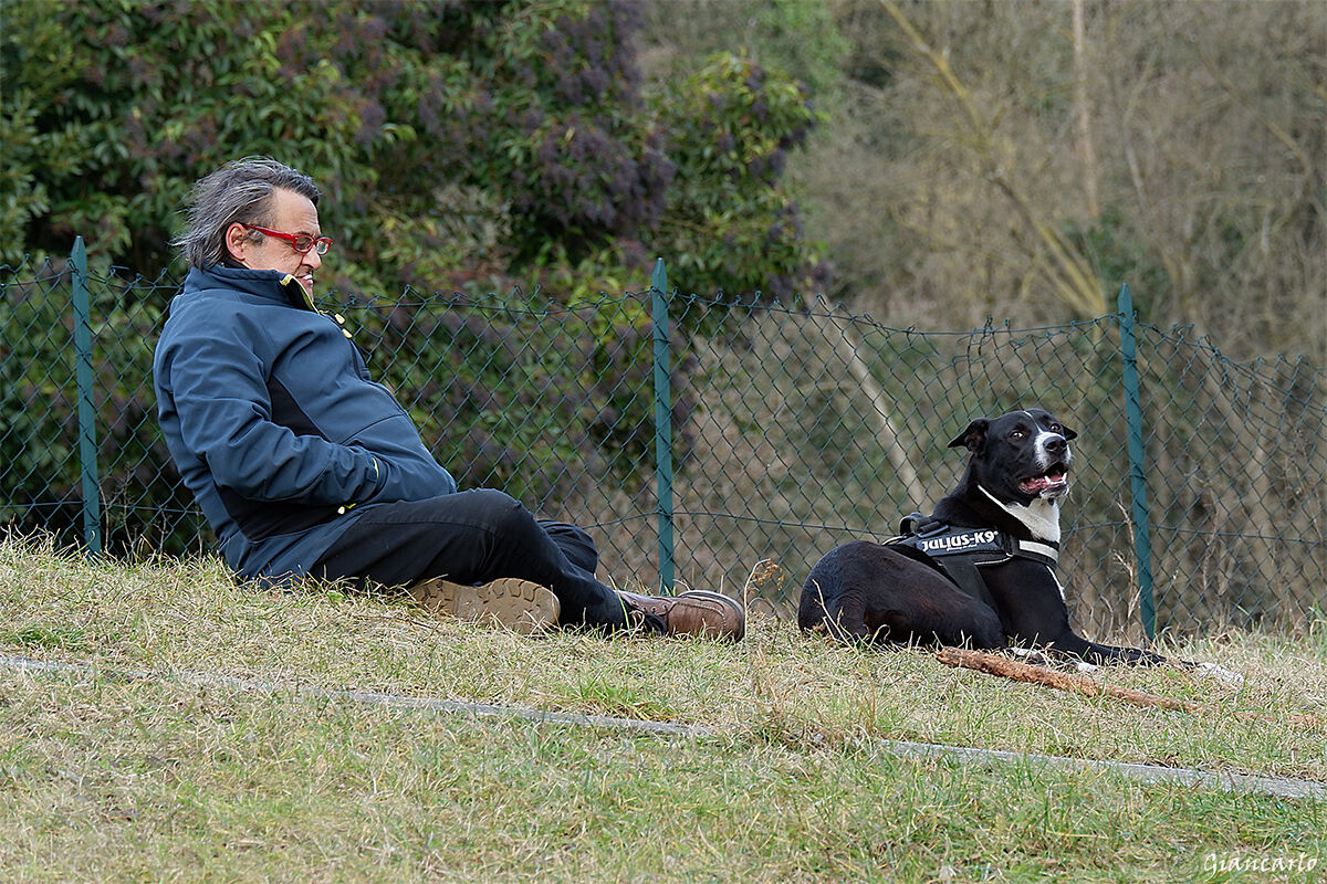 The man and his dog. A possible symbiosis...