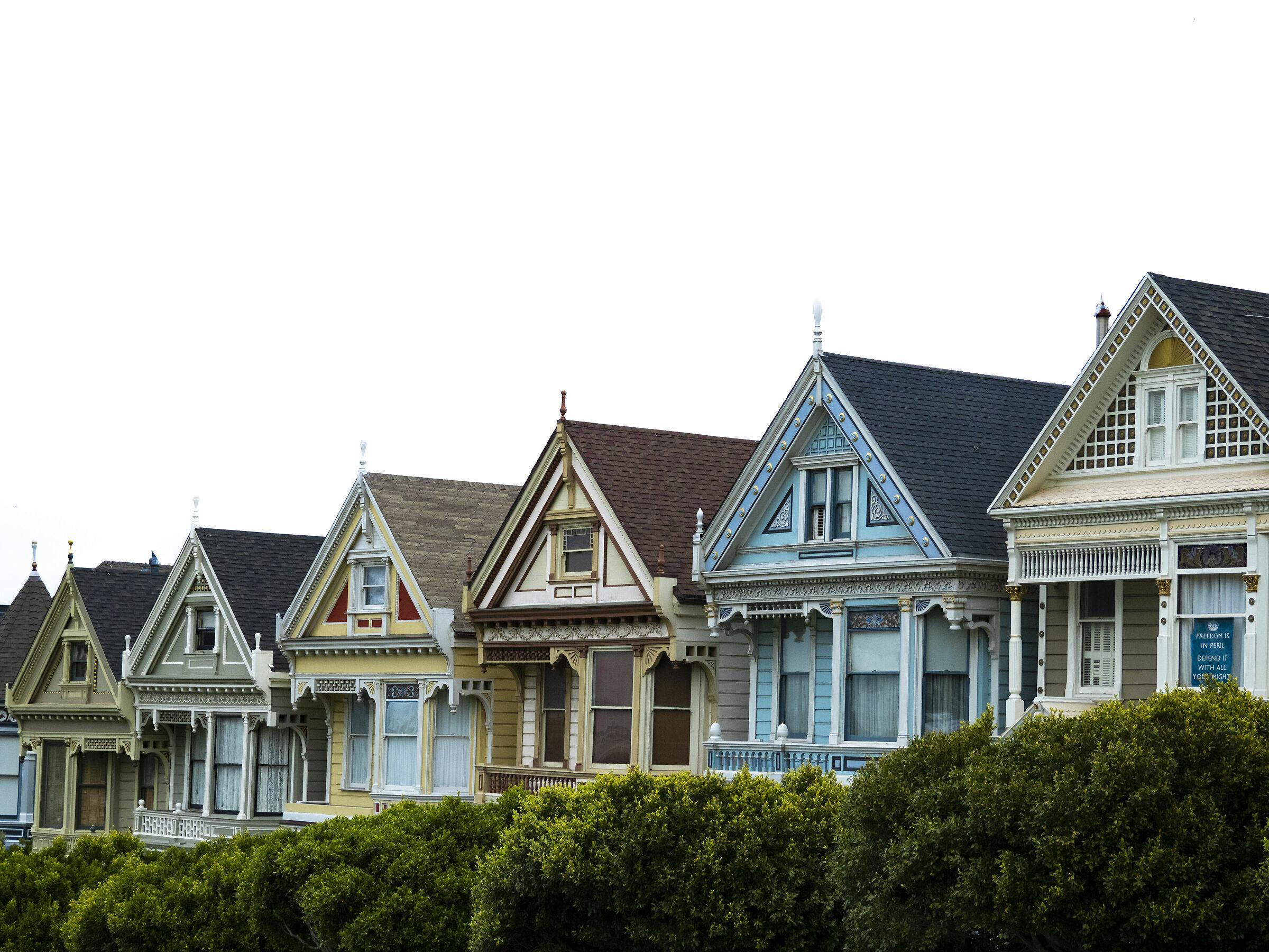 Painted ladies, San Francisco...