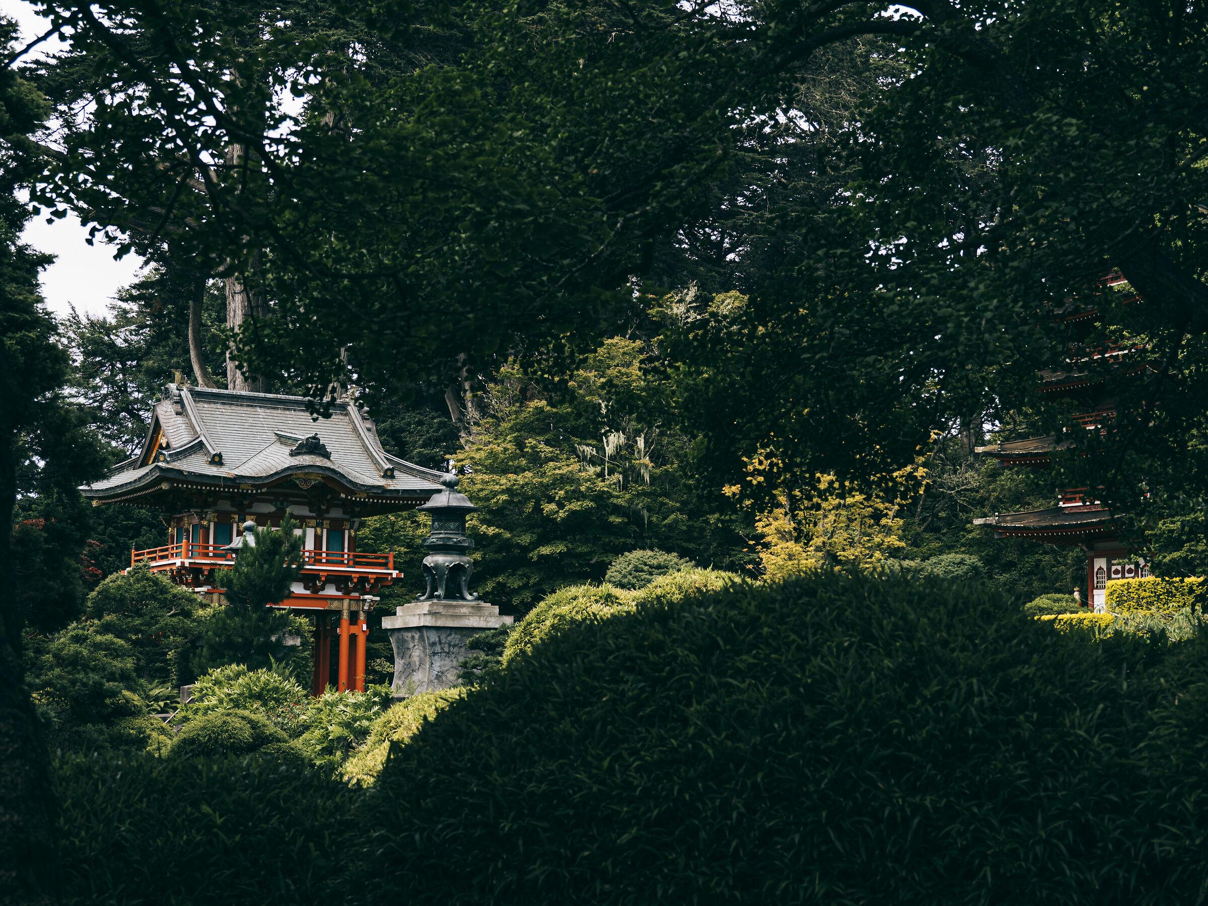 Japanese Tea Garden, San Francisco...