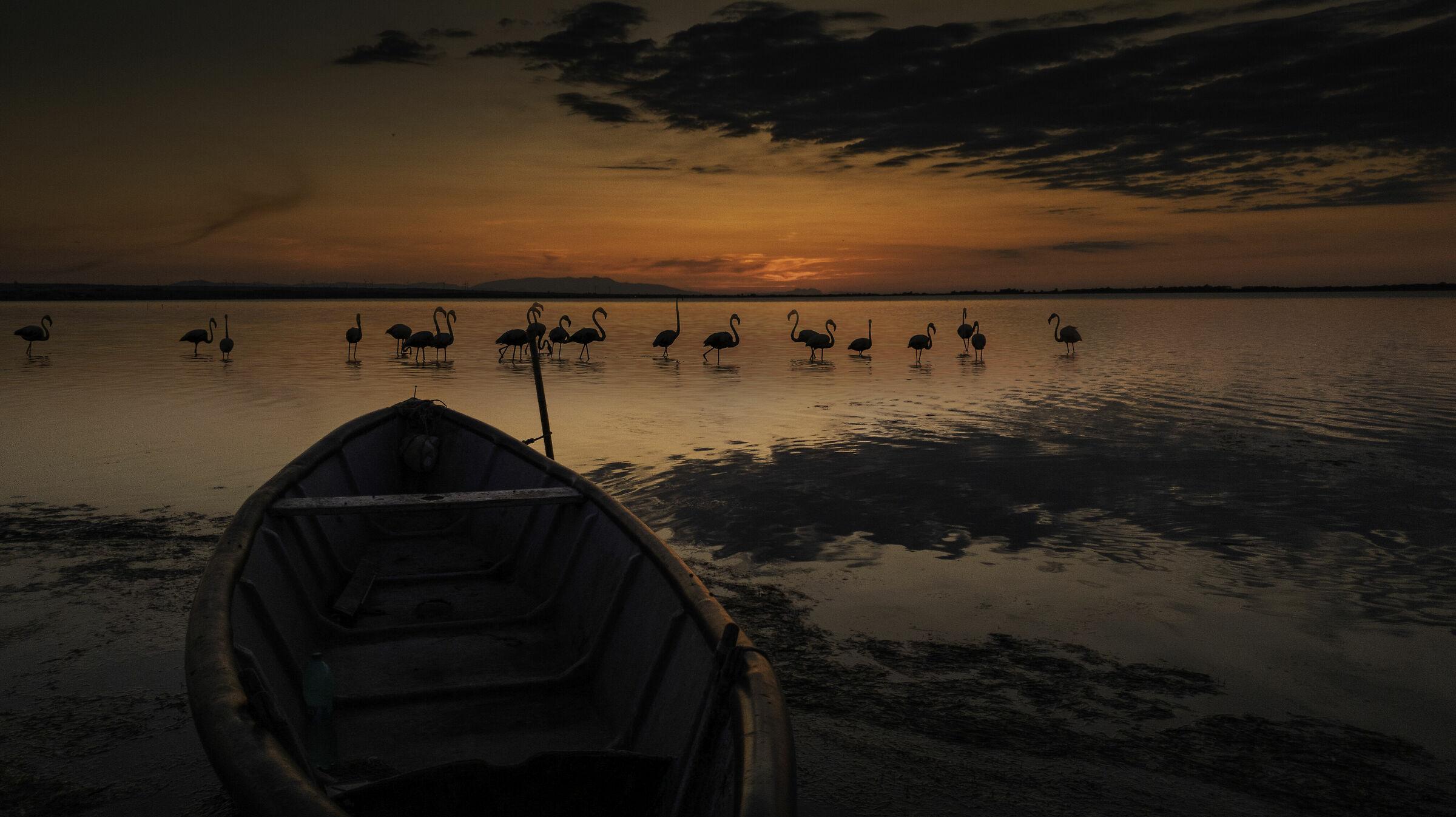 Magic at sunset - LeSINA Lake ...